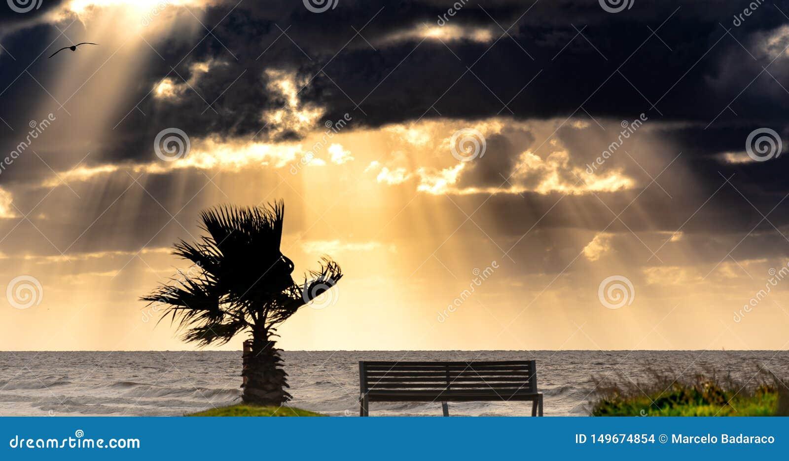 Stormachtige ochtend op de kust en met heel wat wind