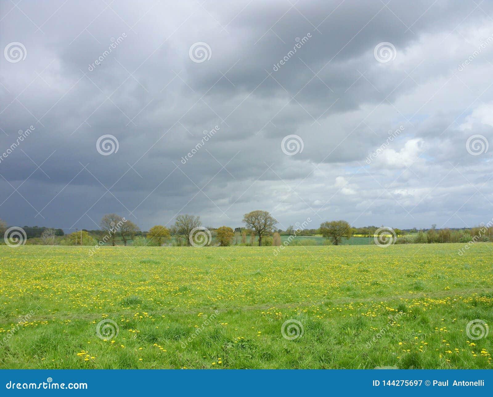 Stormiga himlar - en-kommande dåligt väder