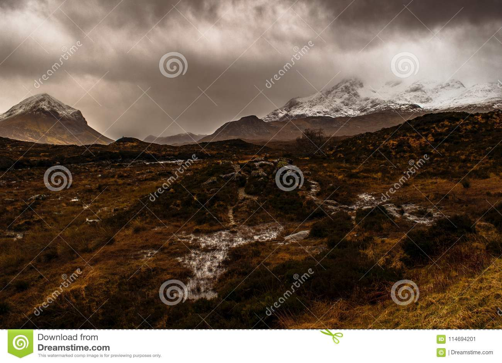 Moor on the Isle of Skye