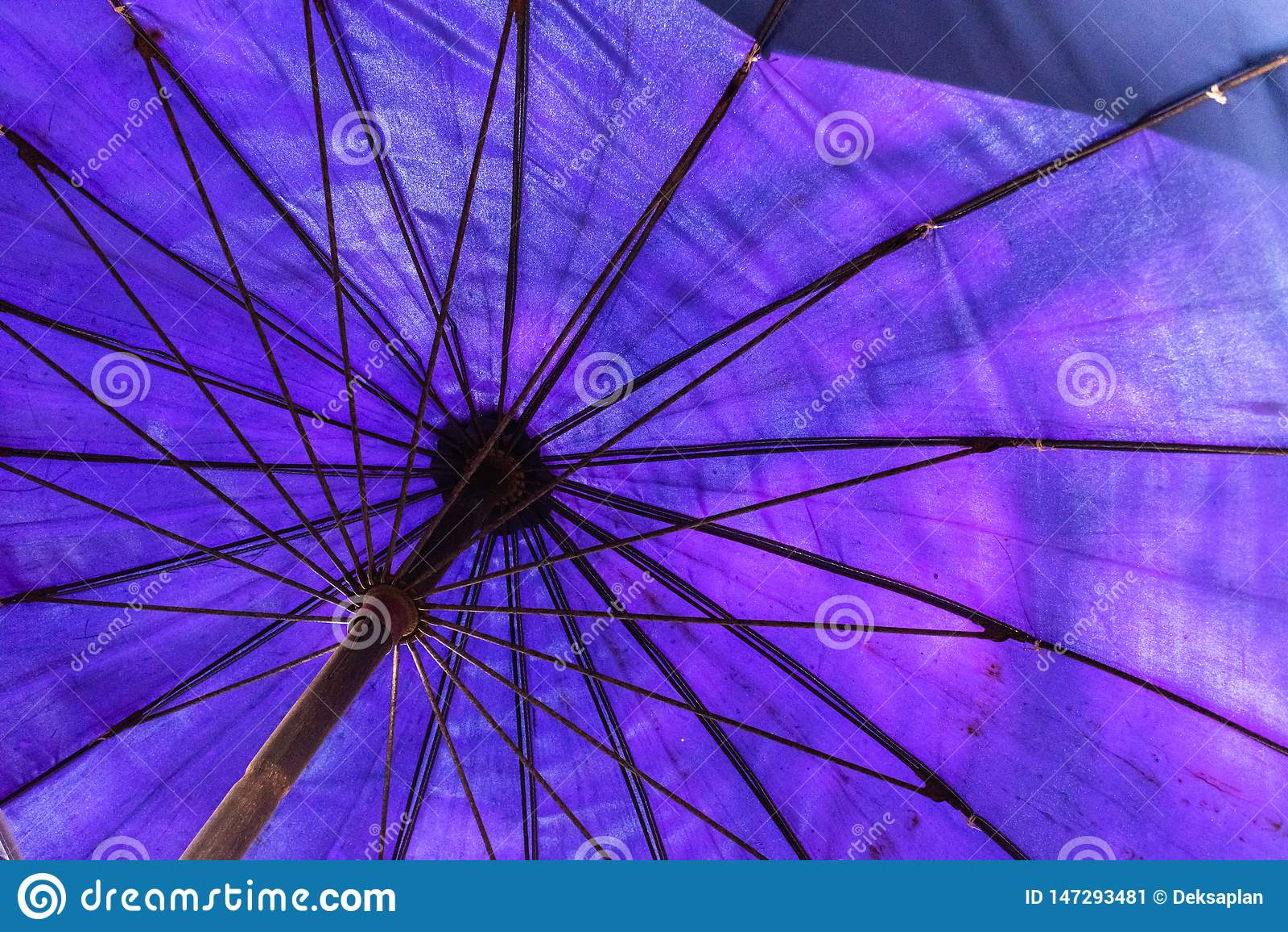 Stort bl?tt paraply p? stranden