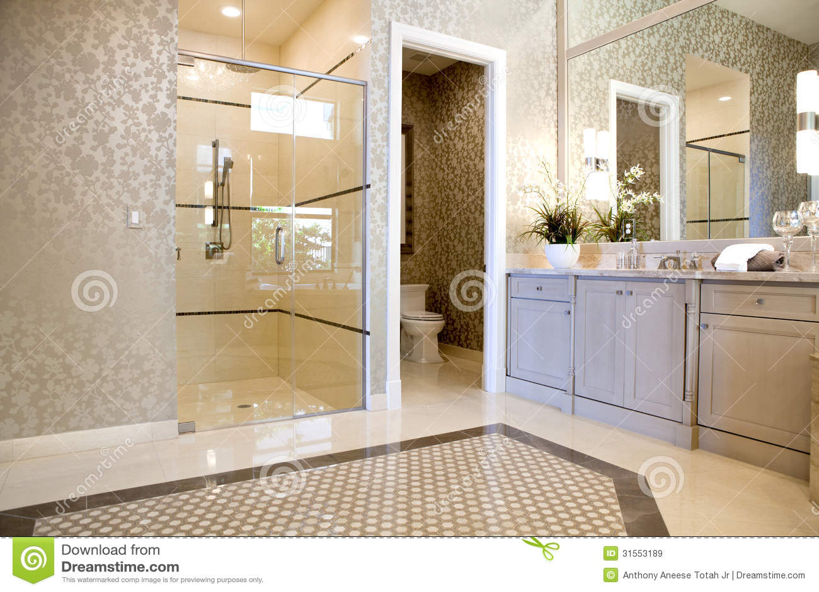 Stort exklusivt ledar  badrum royaltyfria bilder   bild: 31553189