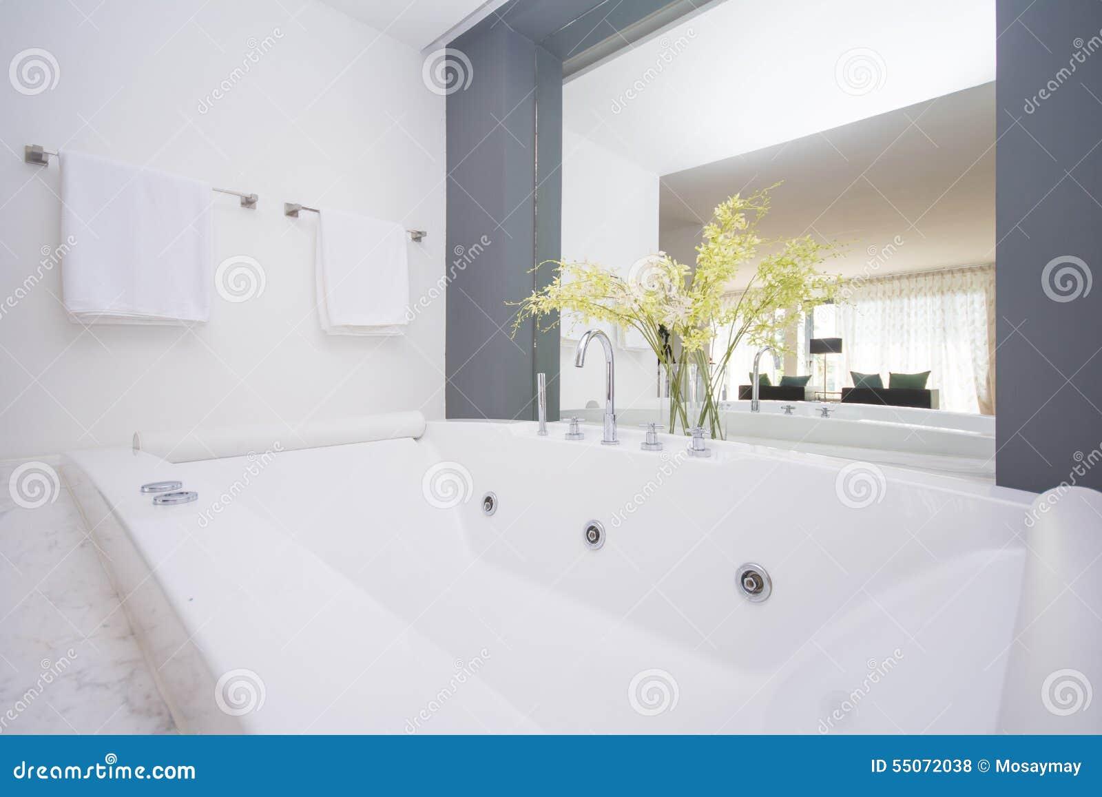 Stort lyxigt badkar i badrum arkivfoto   bild: 55072038