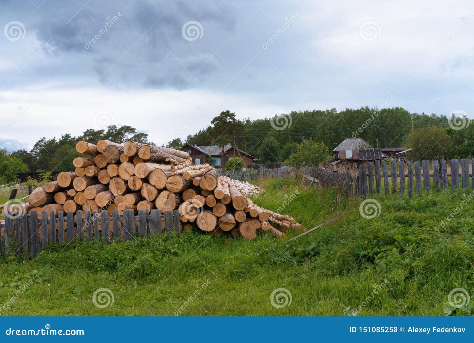 Stos loguje się wioska jarda na lato wieczór w Rosja