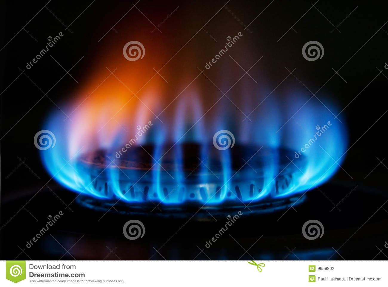 Stove Gas Fire Flame Stock Photo Image Of Blue Heating