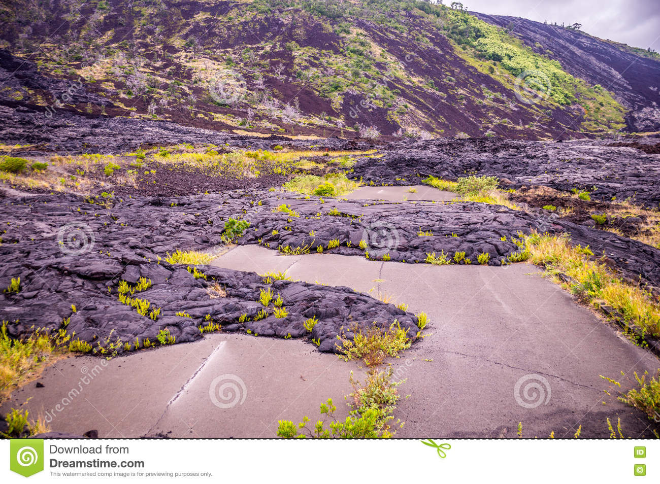 Straße mit Lava in Hawaii