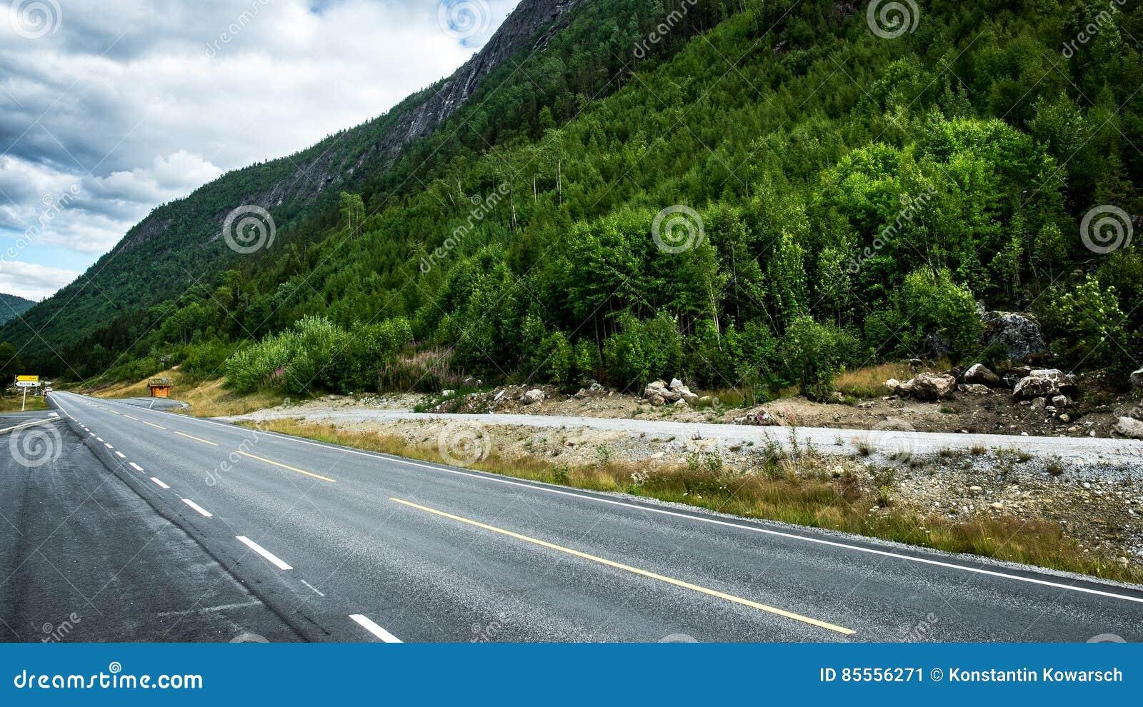 Straße mit Wald