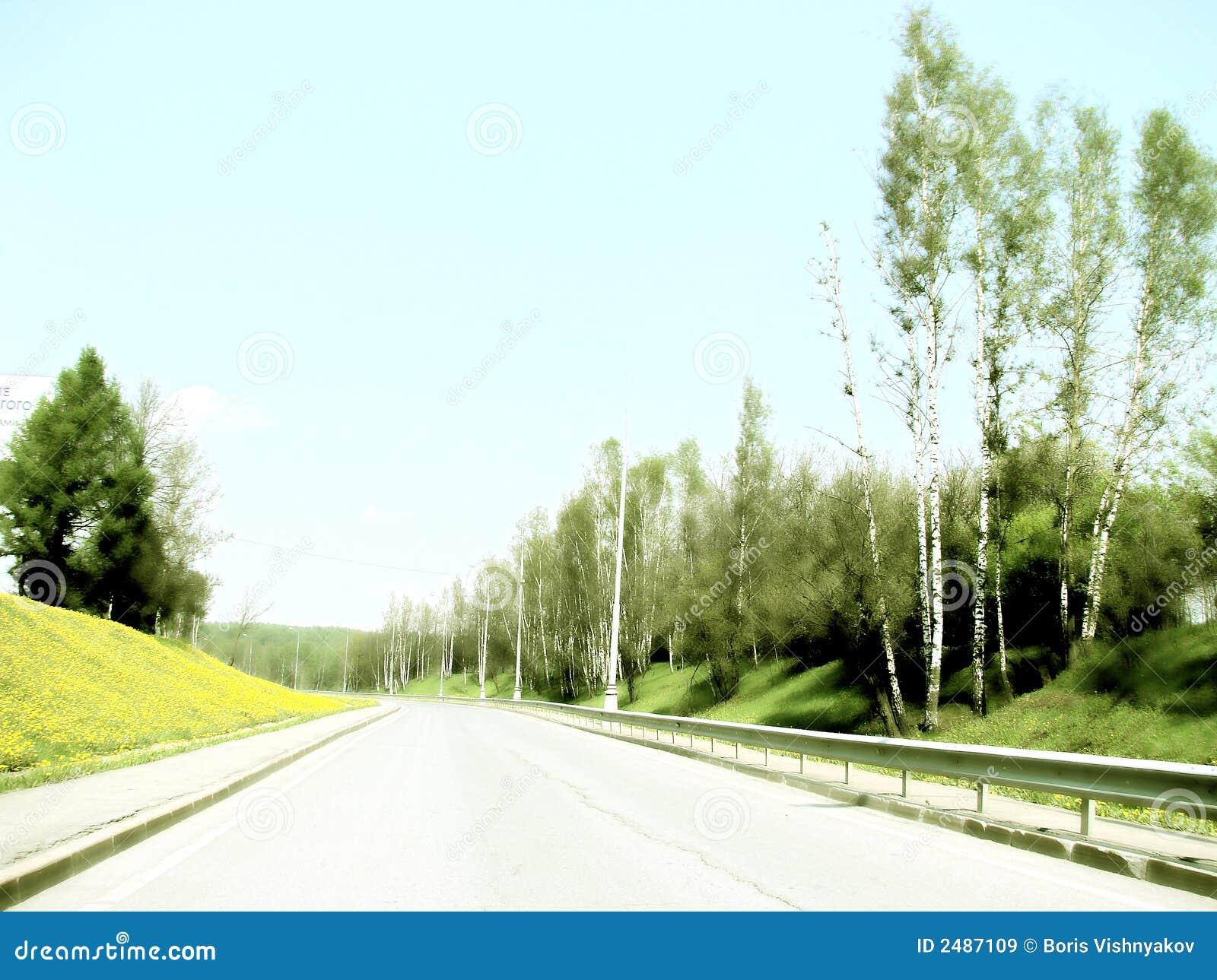 Straße nahe Löwenzahnufer