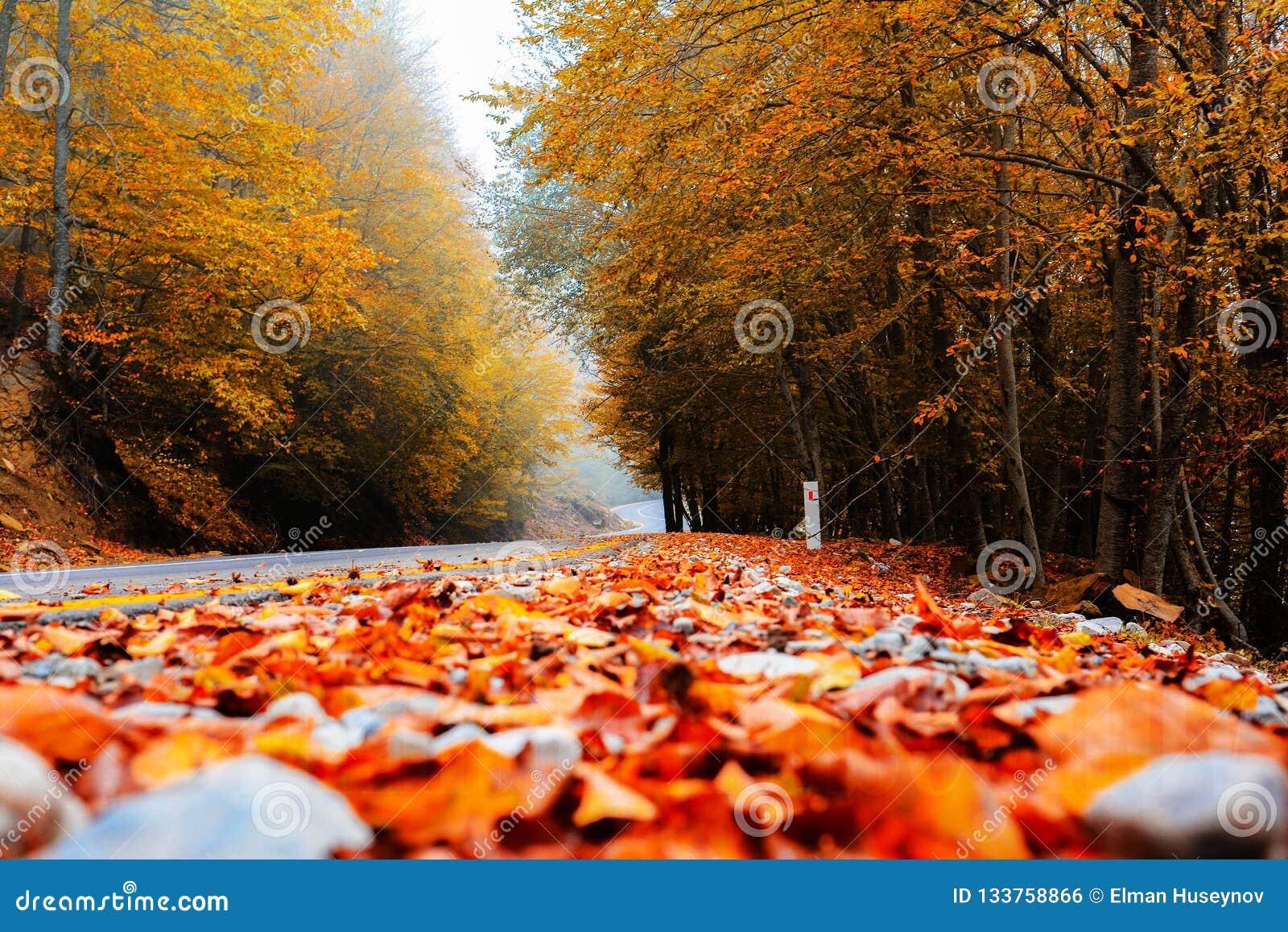 Straße zum Herbst