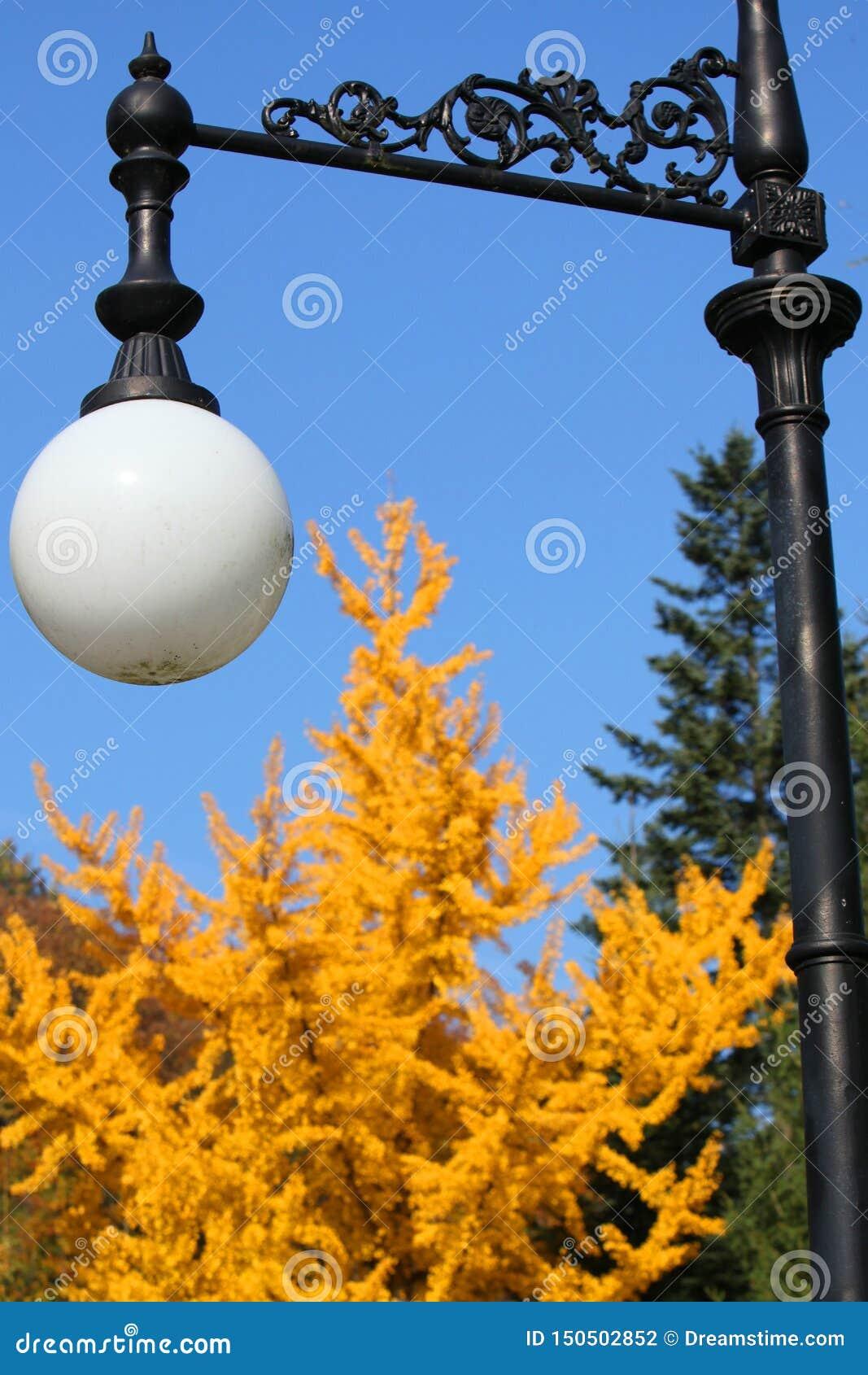 Straßenlaterne im Park auf einem Hintergrund von Gelbgrünbäumen
