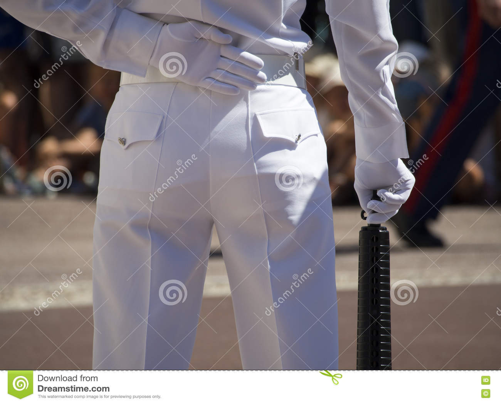 Strażowa zmiana przy Prince& x27; s pałac Monaco