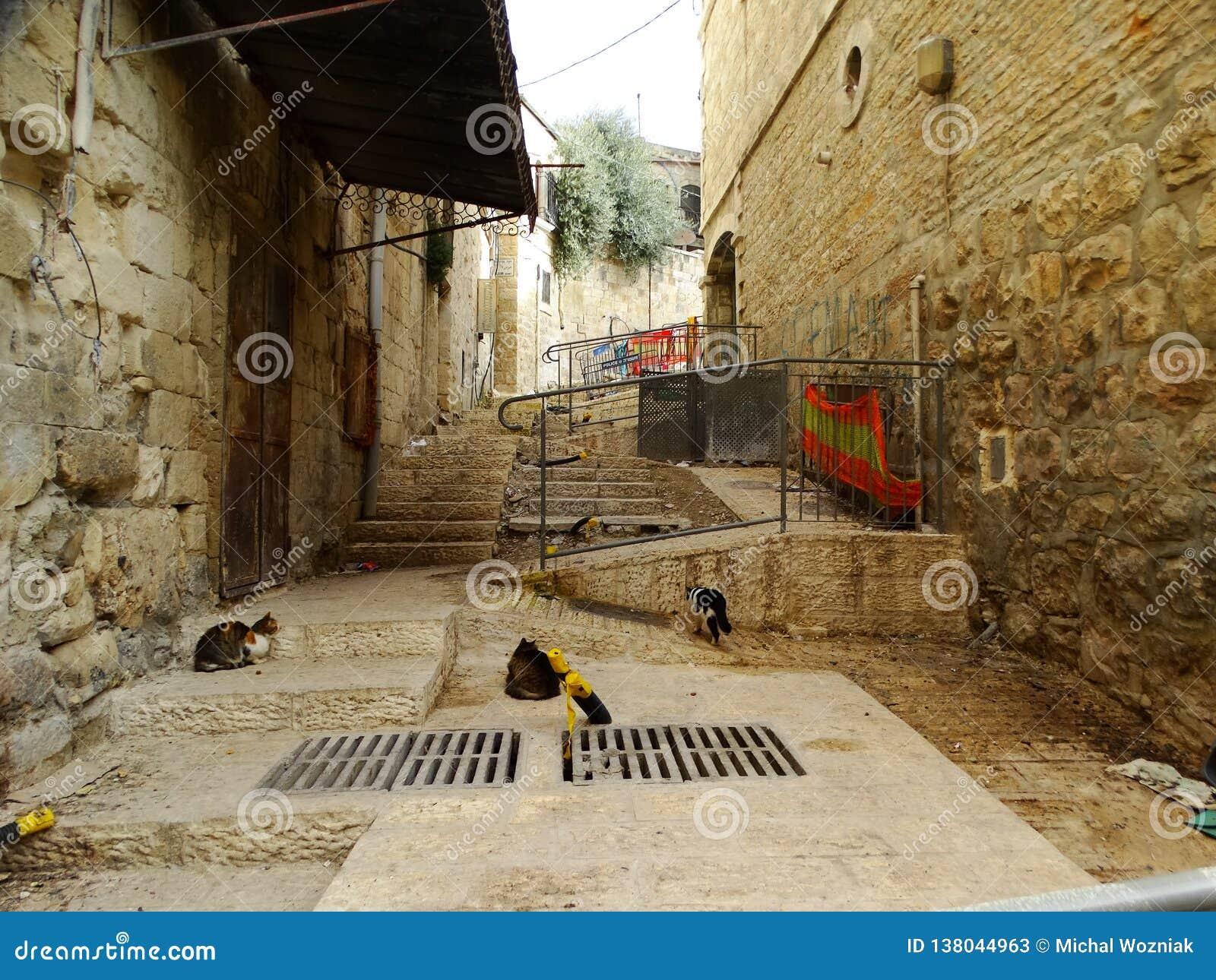 Straatscène van Bethlehem, Palestina Israël