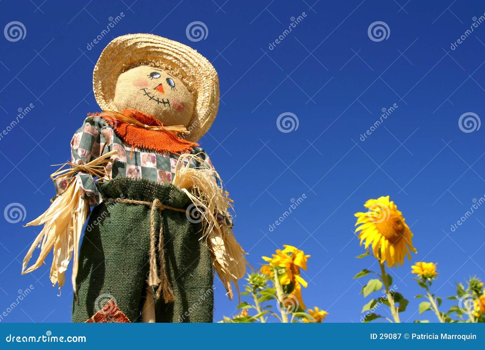 Download Strach Na Wróble Pola Słonecznik Obraz Stock - Obraz złożonej z scarecrow, spadek: 29087