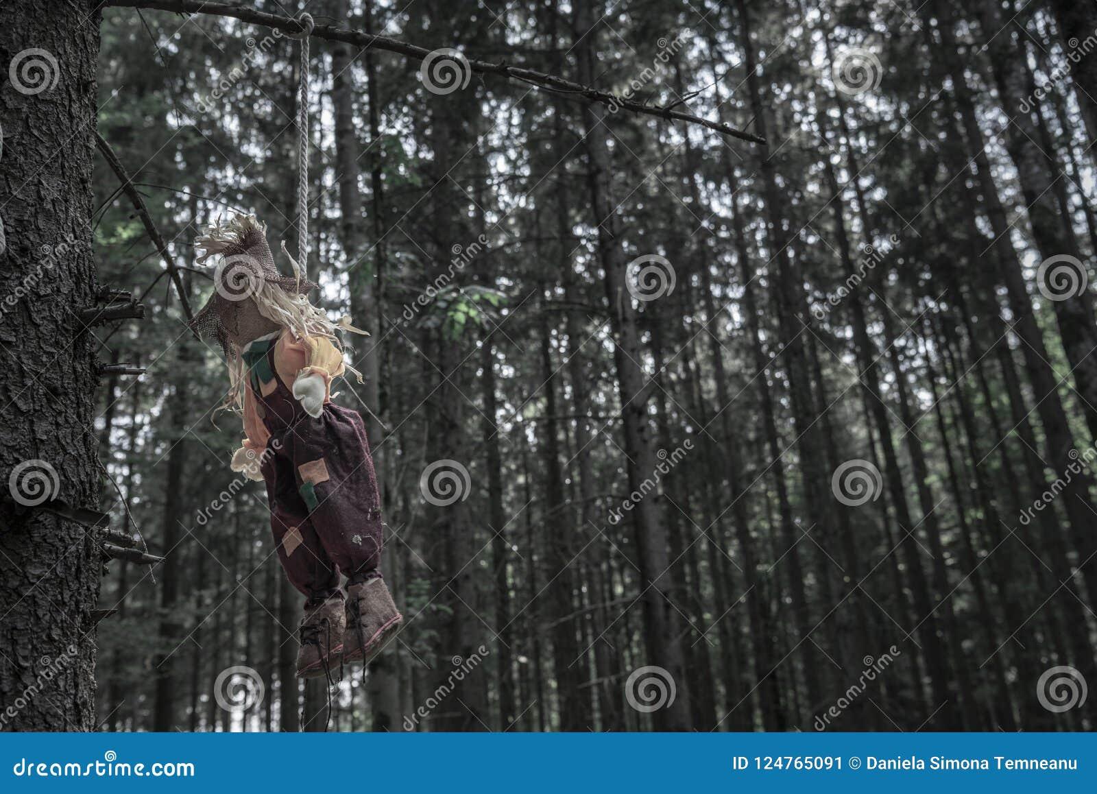 Strach na wróble wieszał od gałąź w ponurym lesie