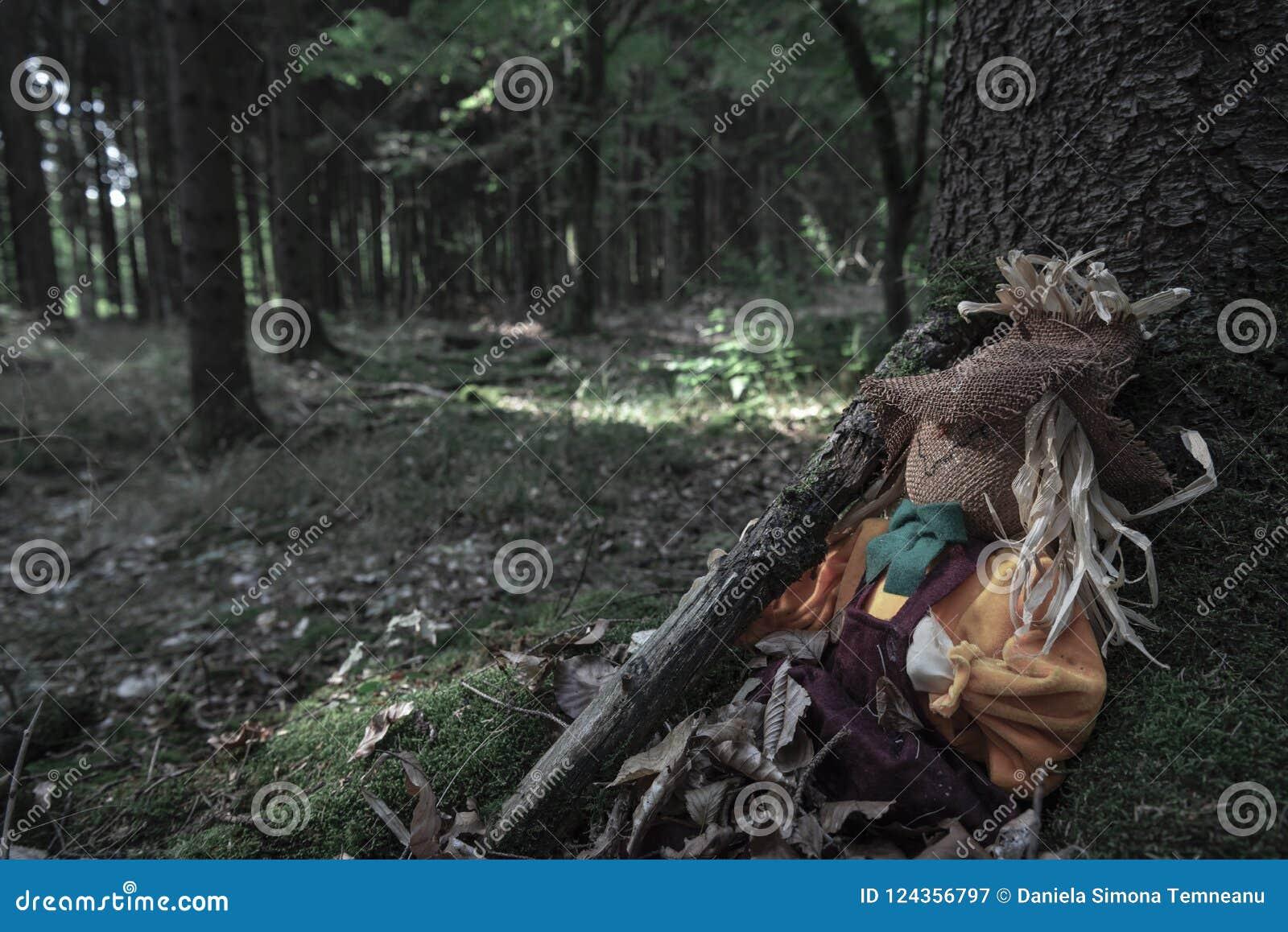 Strach na wróble zakrywający w wysuszonych liściach przy drzewo korzeniem