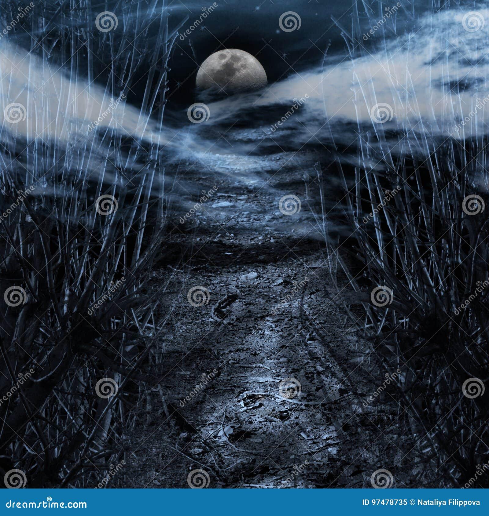 Strada alla luna