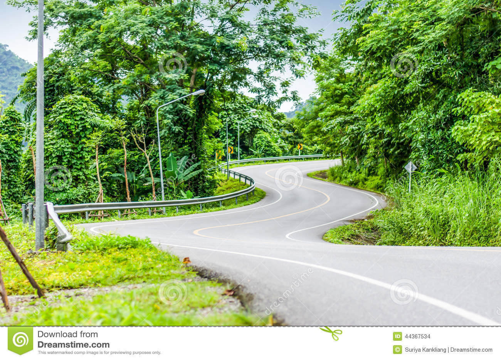 Strada curva serpente