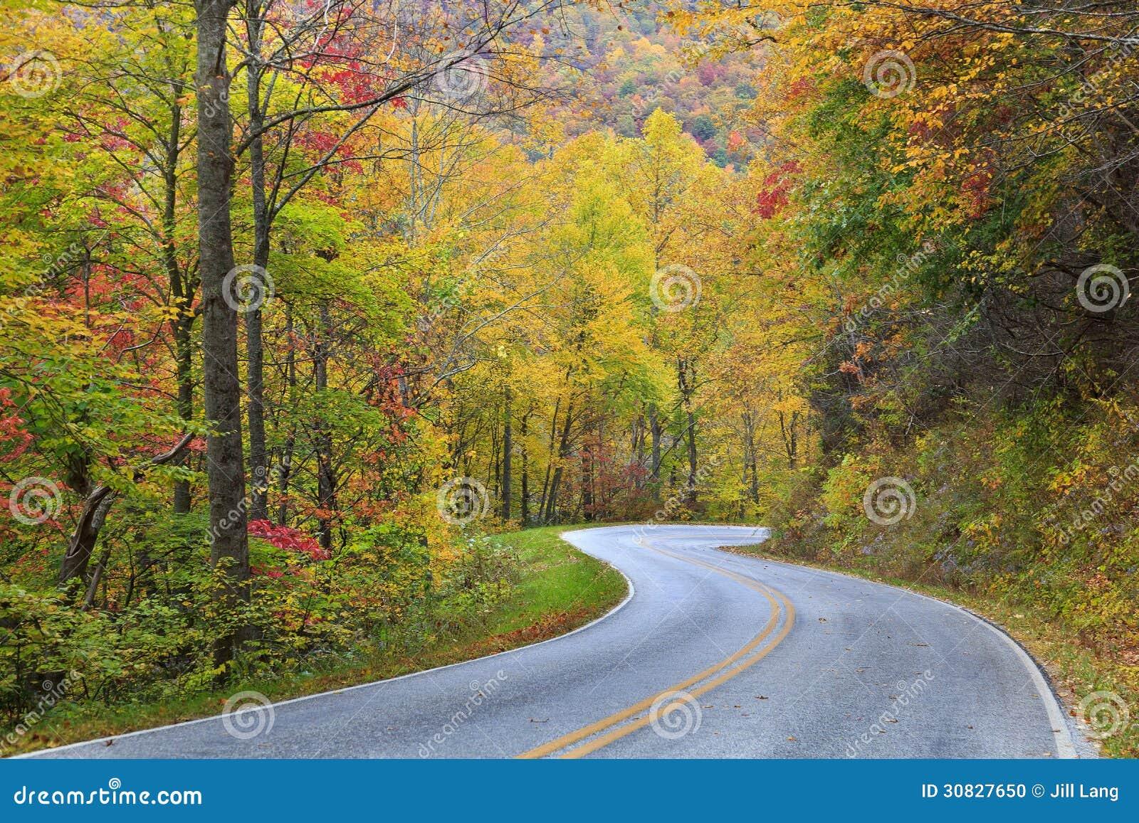 Strada della montagna in autunno