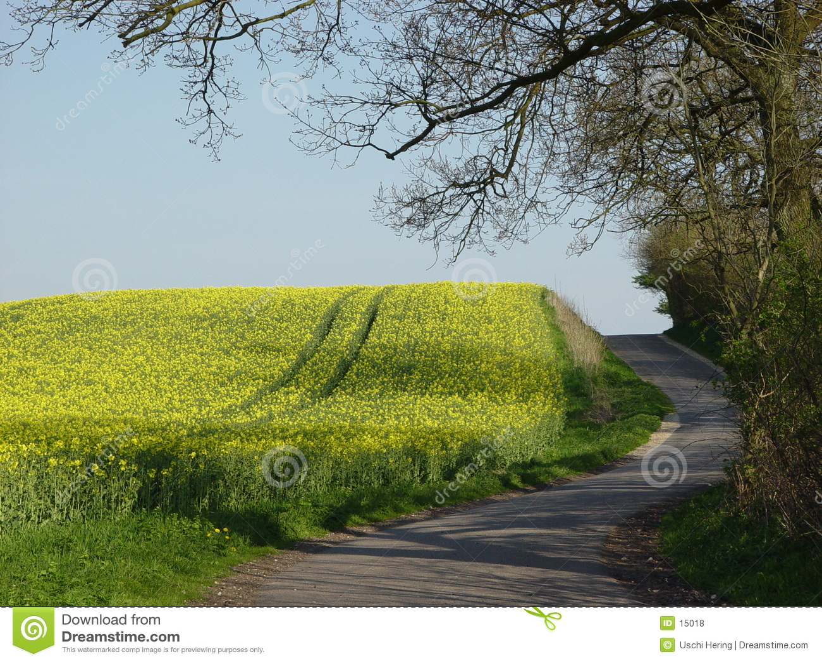 Strada di bobina