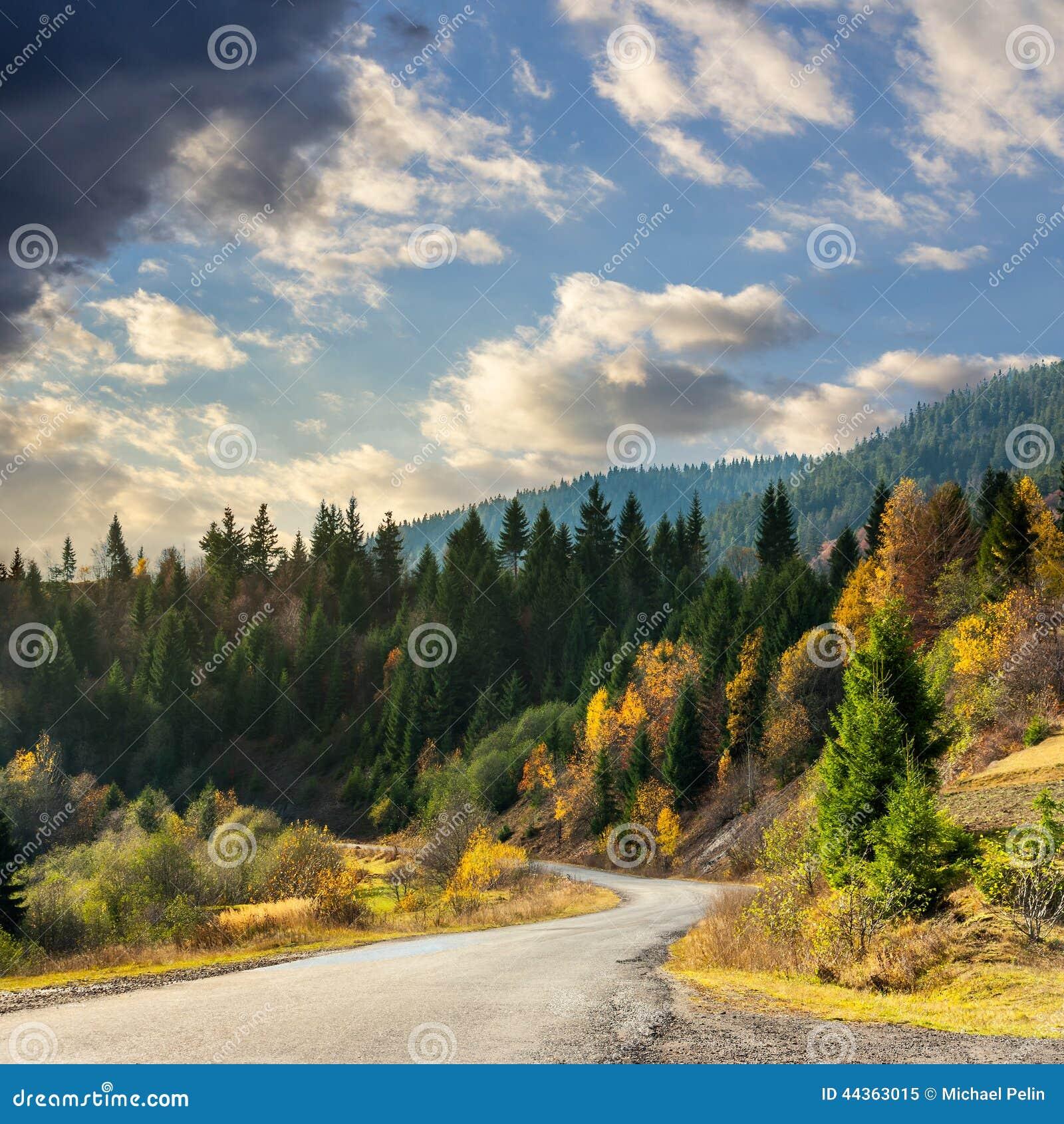 Strada di bobina alla foresta in montagne
