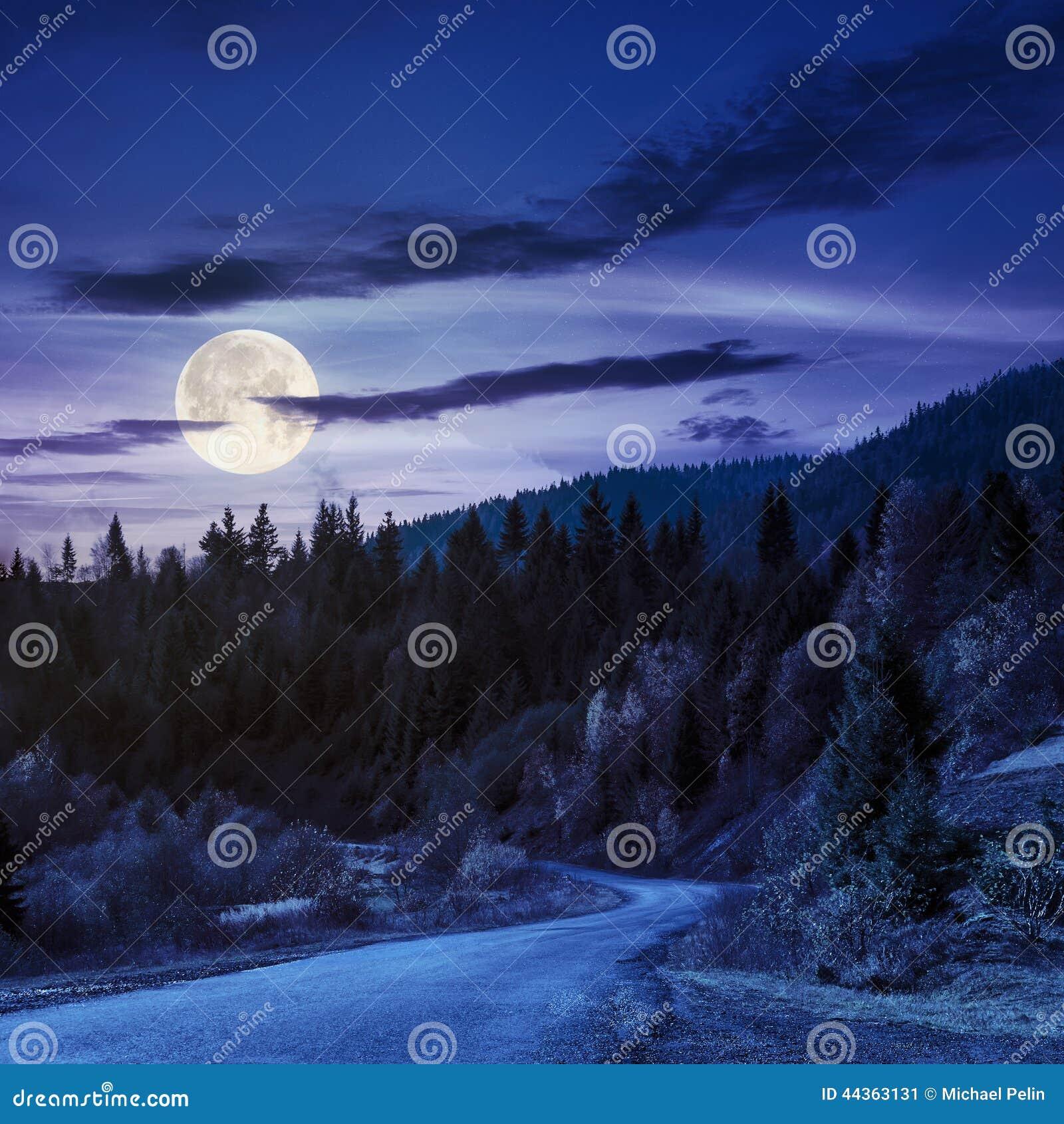 Strada di bobina alla foresta in montagne alla notte