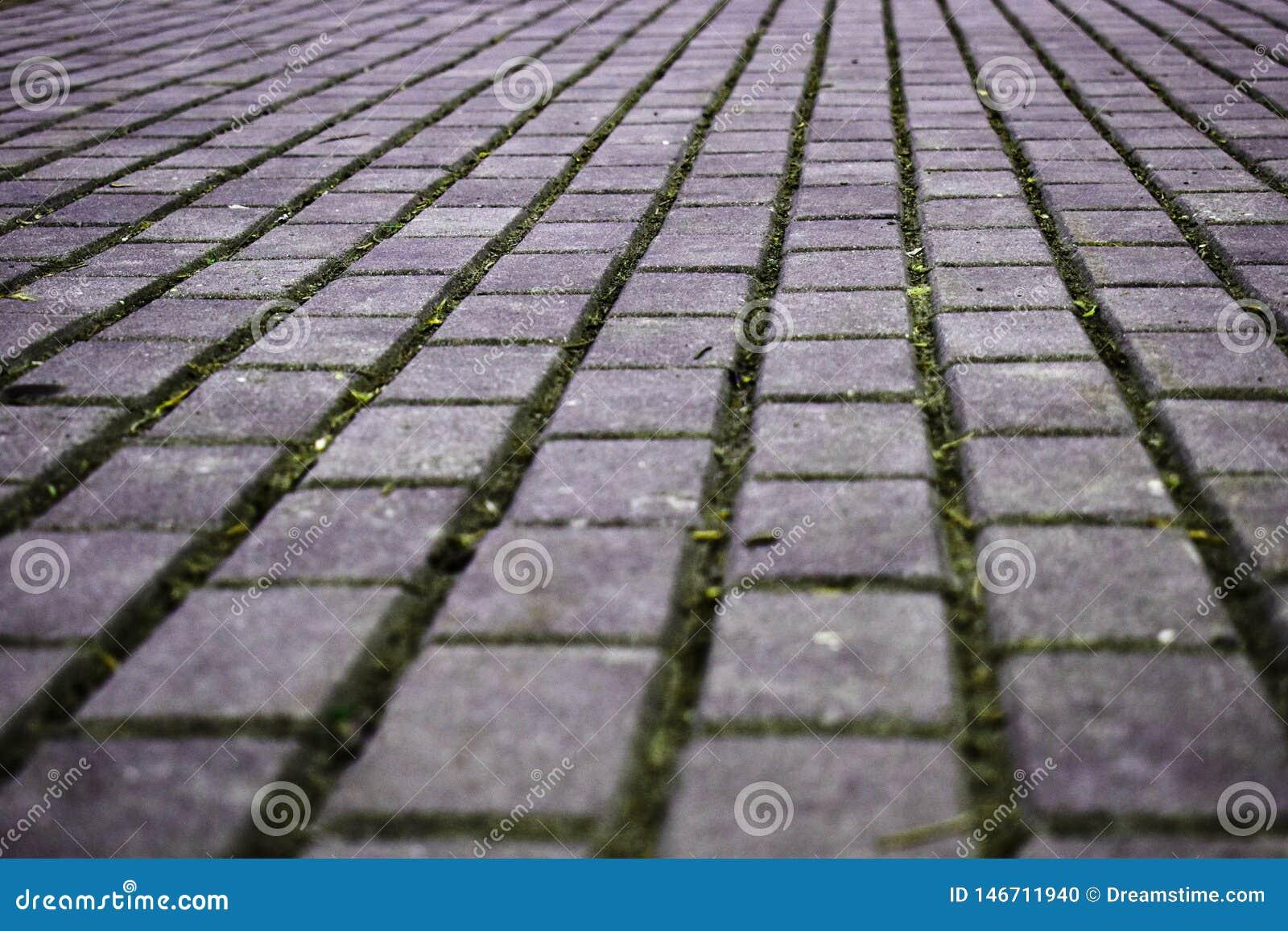 Strada di camminata fatta delle pietre per lastricati del cemento