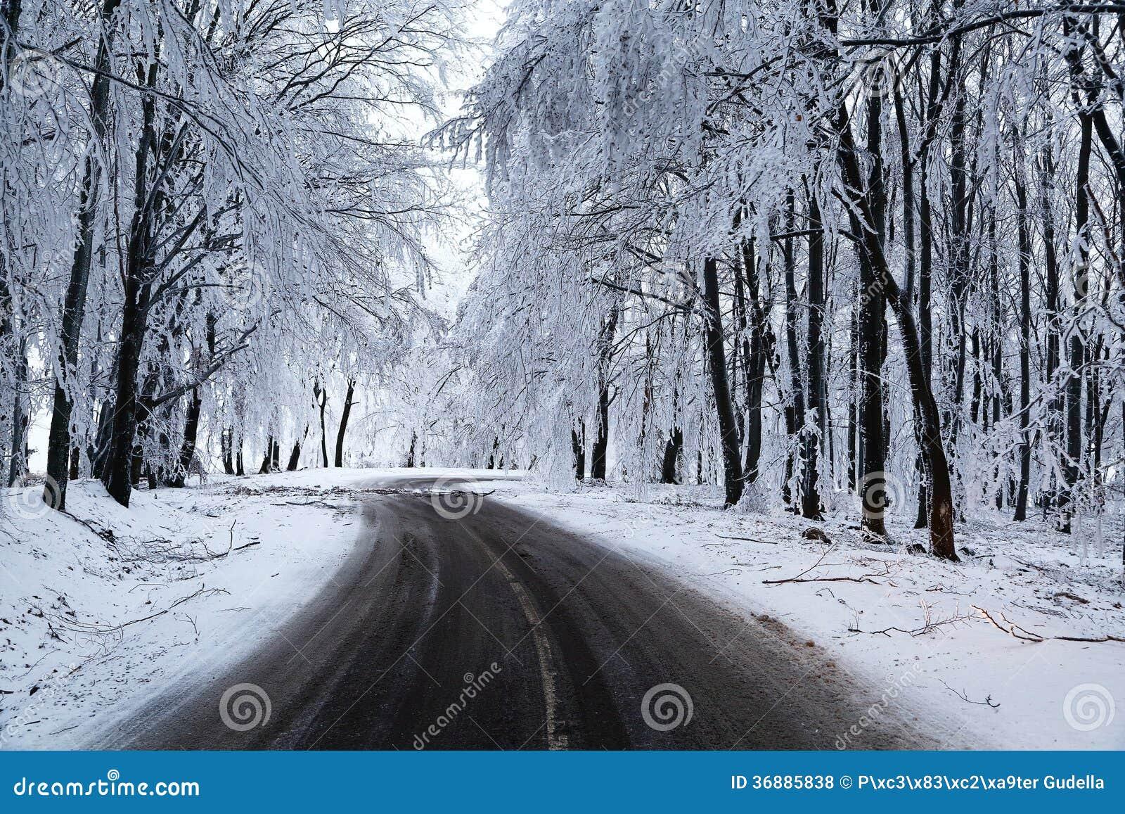 Download Strada di inverno fotografia stock. Immagine di freddo - 36885838