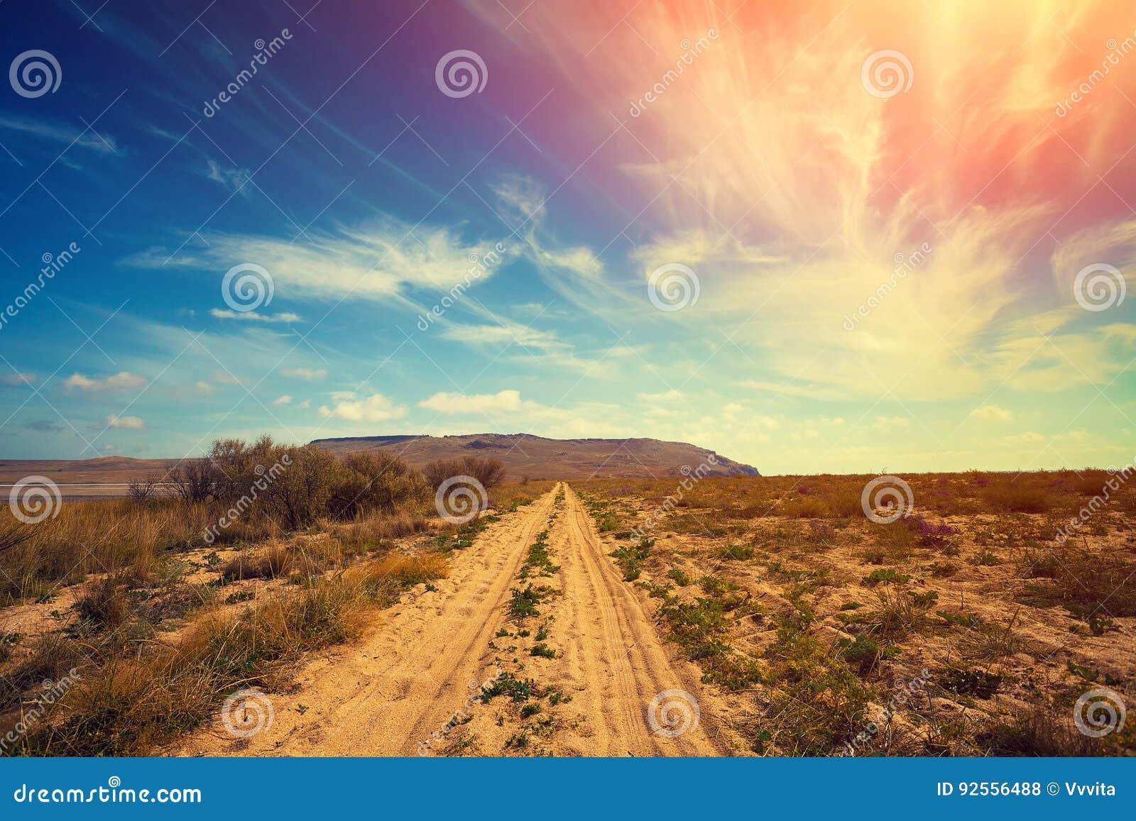 Strada nella steppa