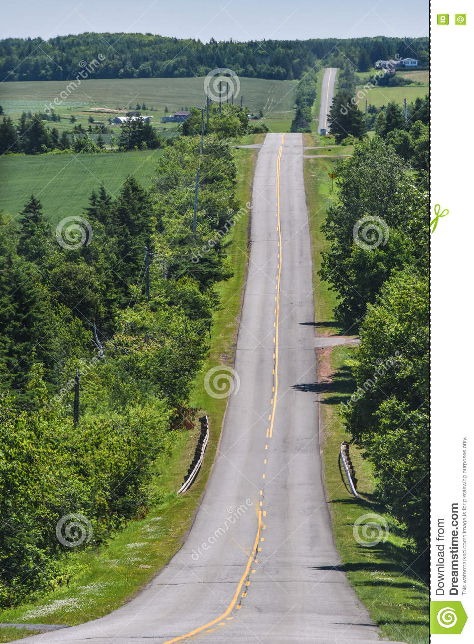 Straight Road Lined With Trees Goes Forever Stock Photo - Image ... for Straight Road With Trees  29dqh