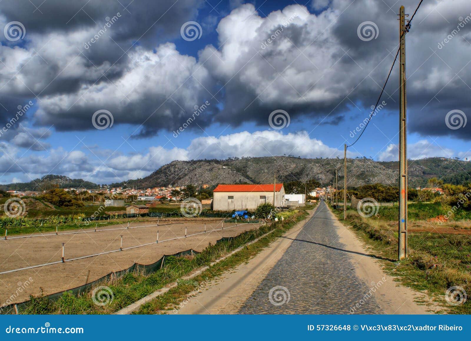 Straight road near the beach