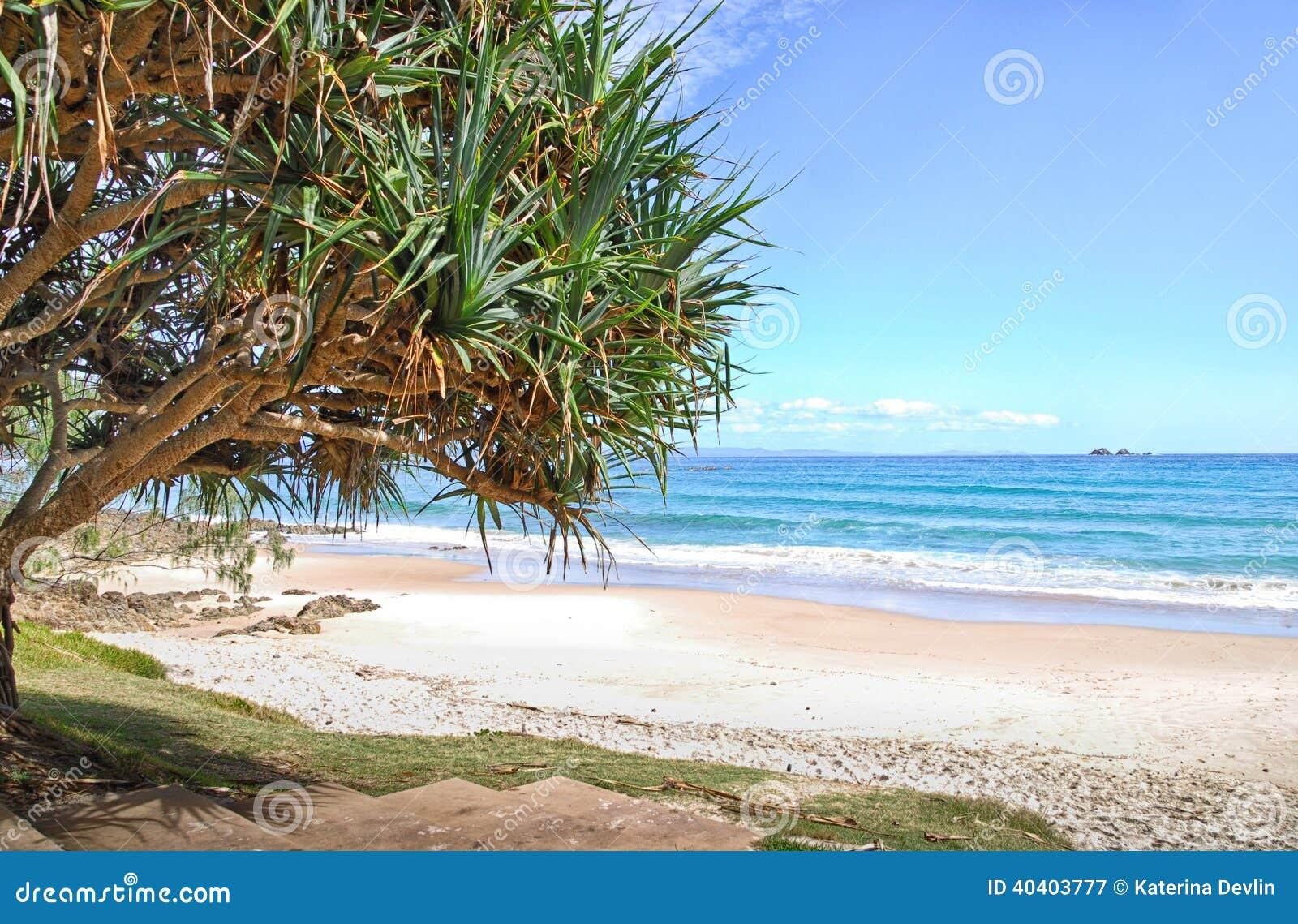 Strand in Byron Bay in Australië