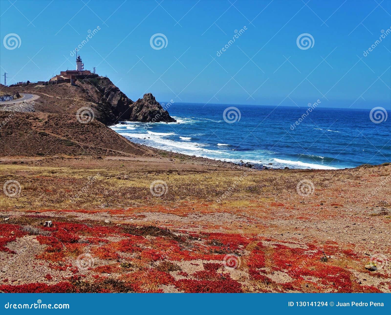 Strand des Corralete-cabo Des Gata Nijar Almeria Andalusia Spain