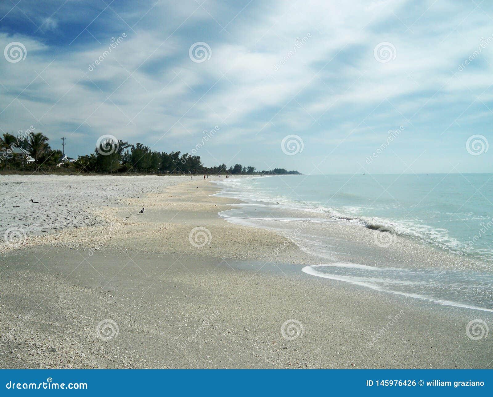 Strand an einem sonnigen Tag mit blauem Wasser