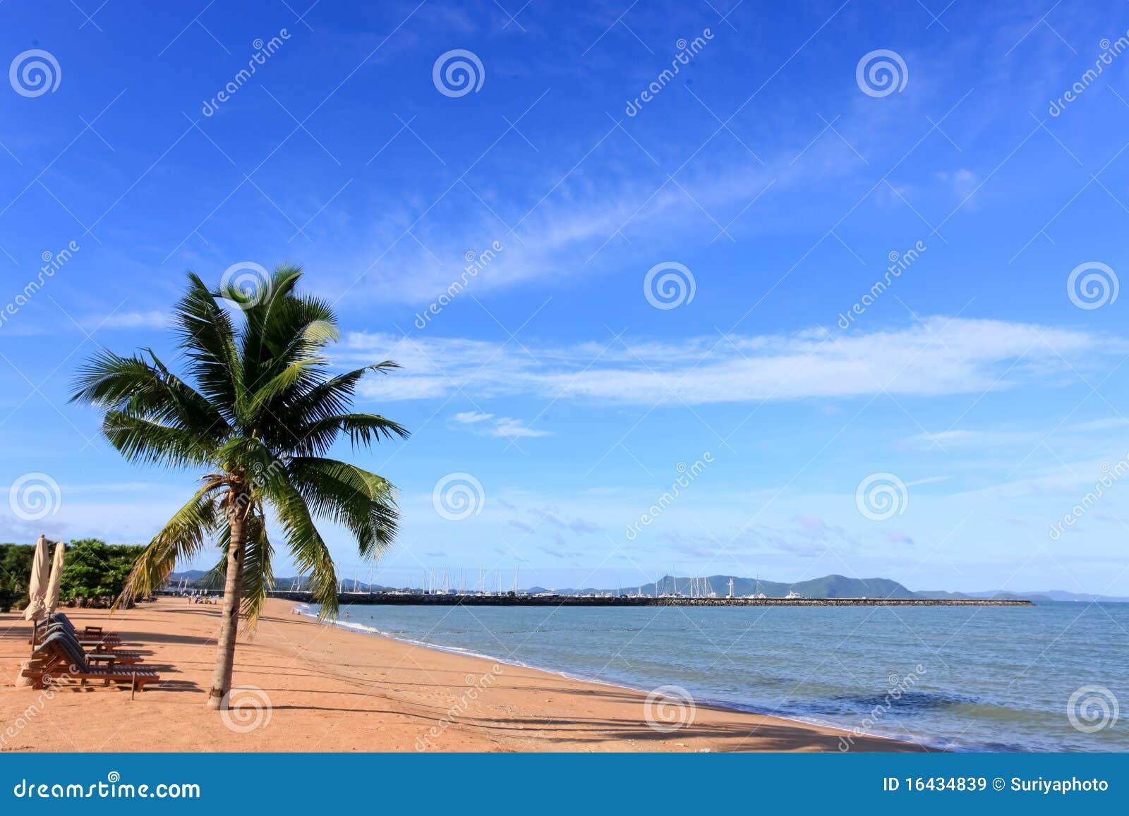 Strand, Kokosnoot en blauwe hemel