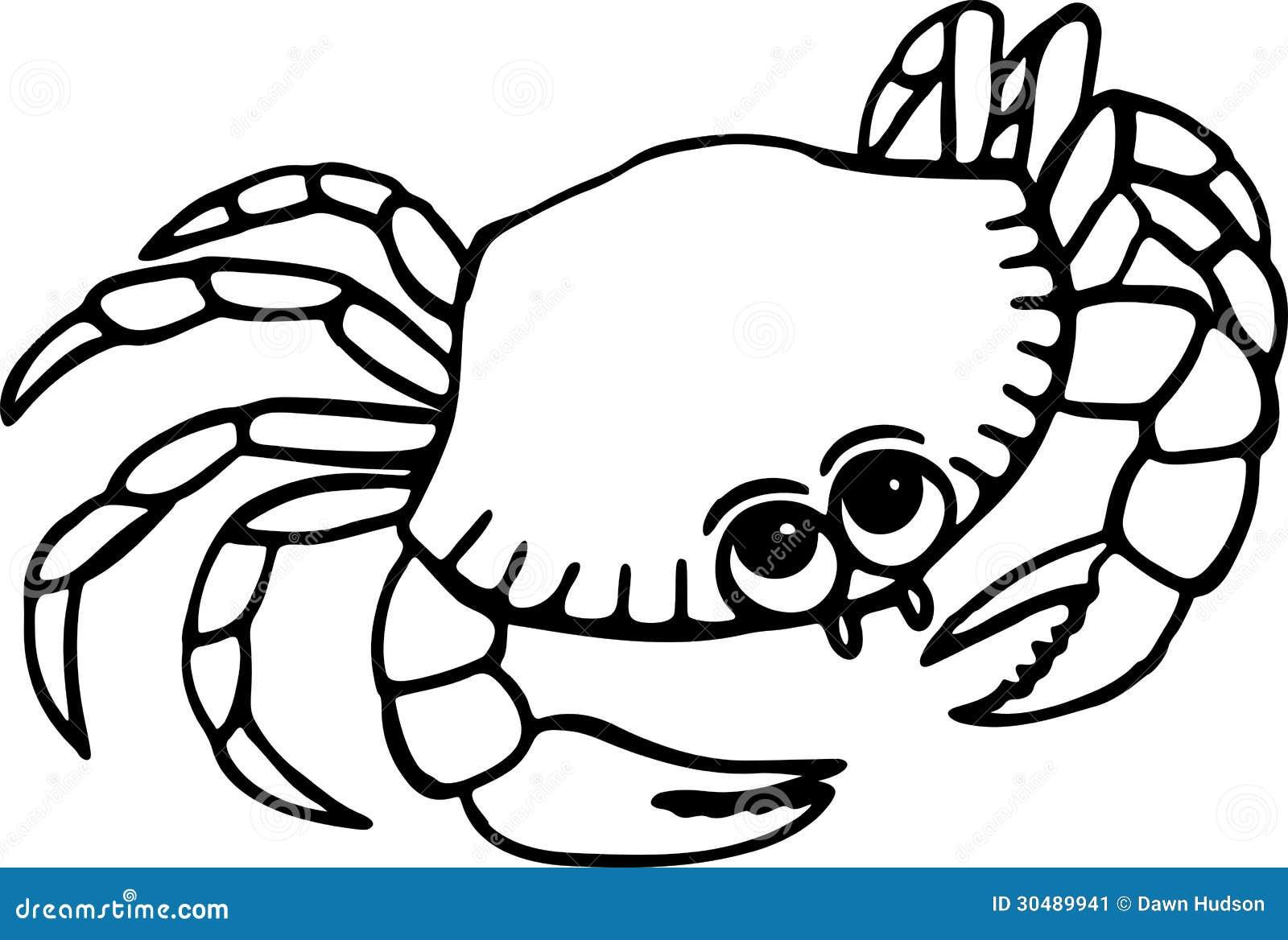 Strand clipart schwarz weiß  Strand-Krabbe Stockbild - Bild: 30489941