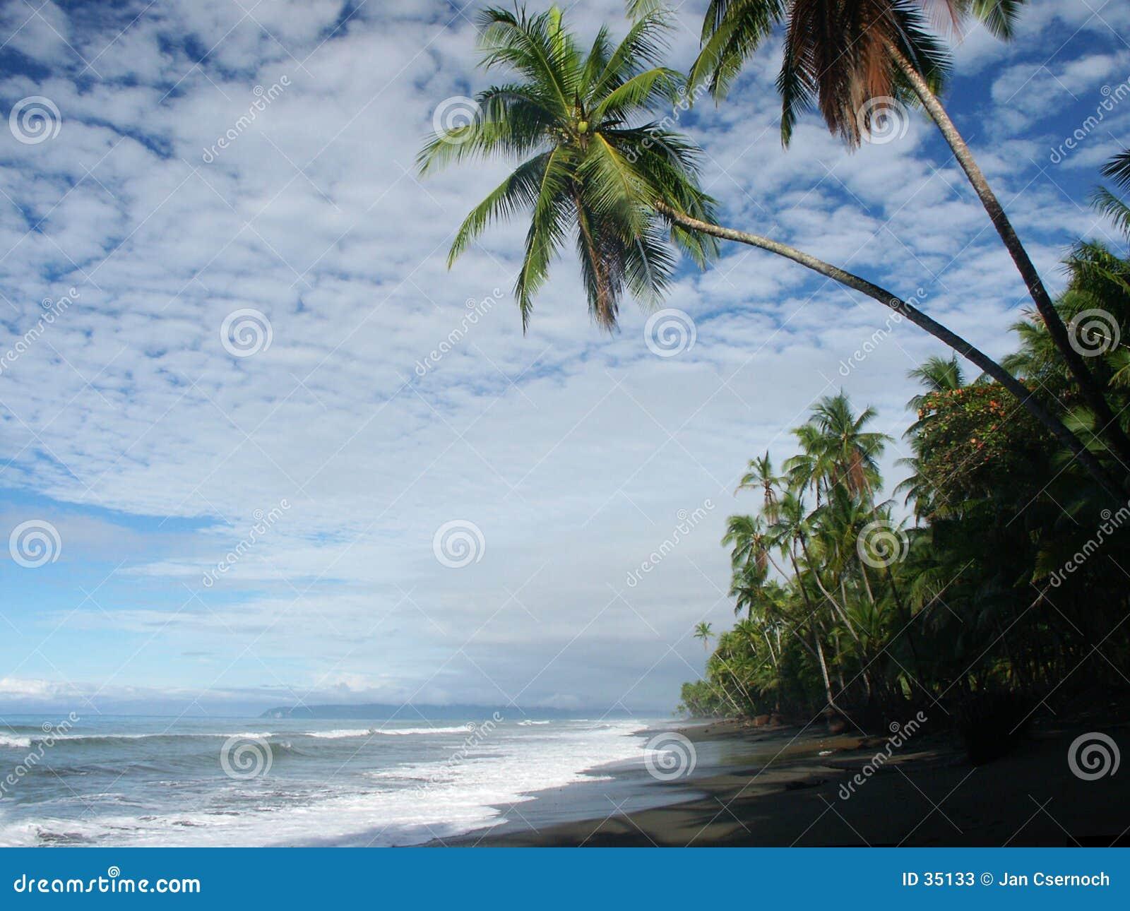Strand met bewolkte hemel