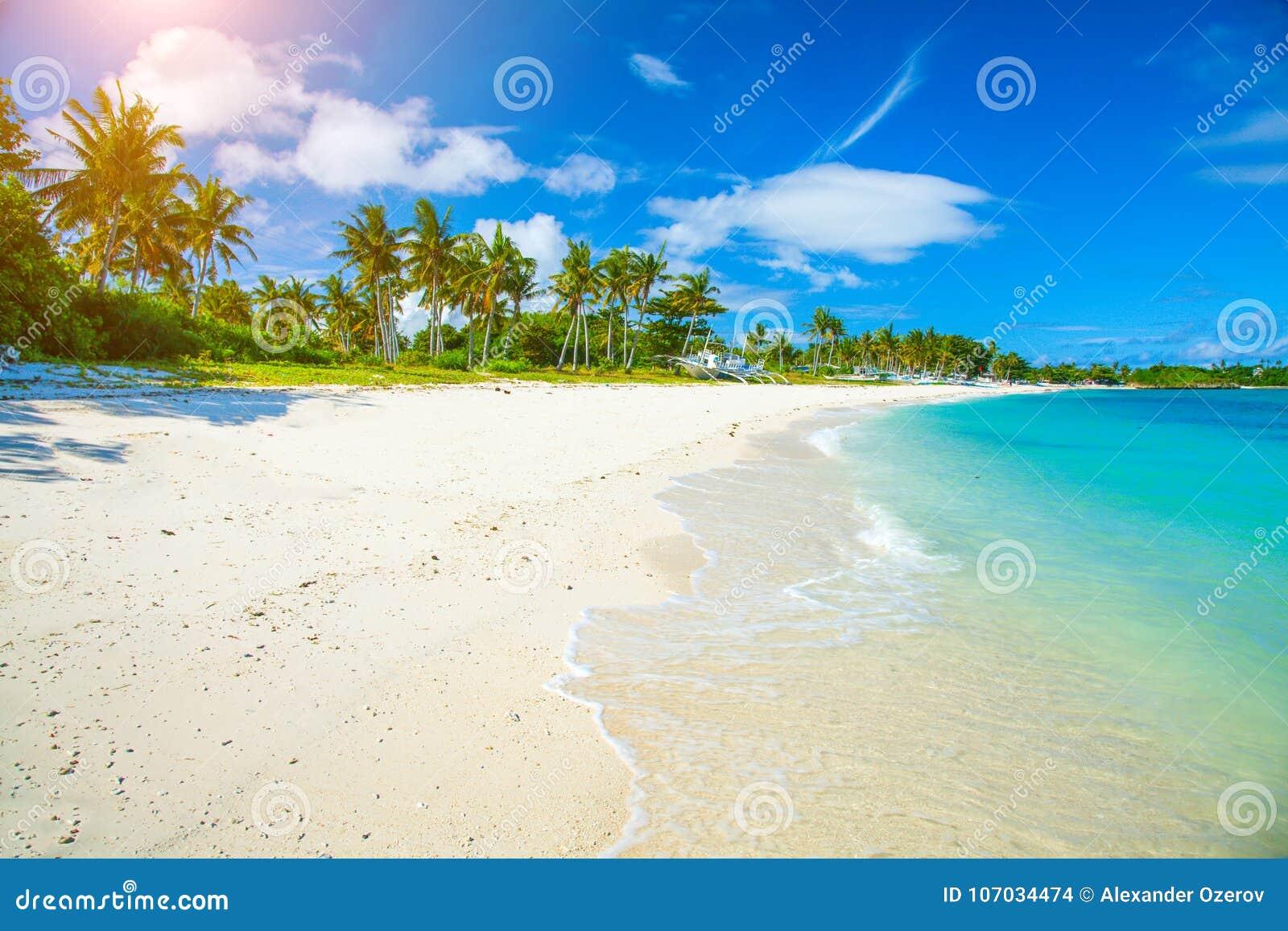 Strand och härligt tropiskt hav