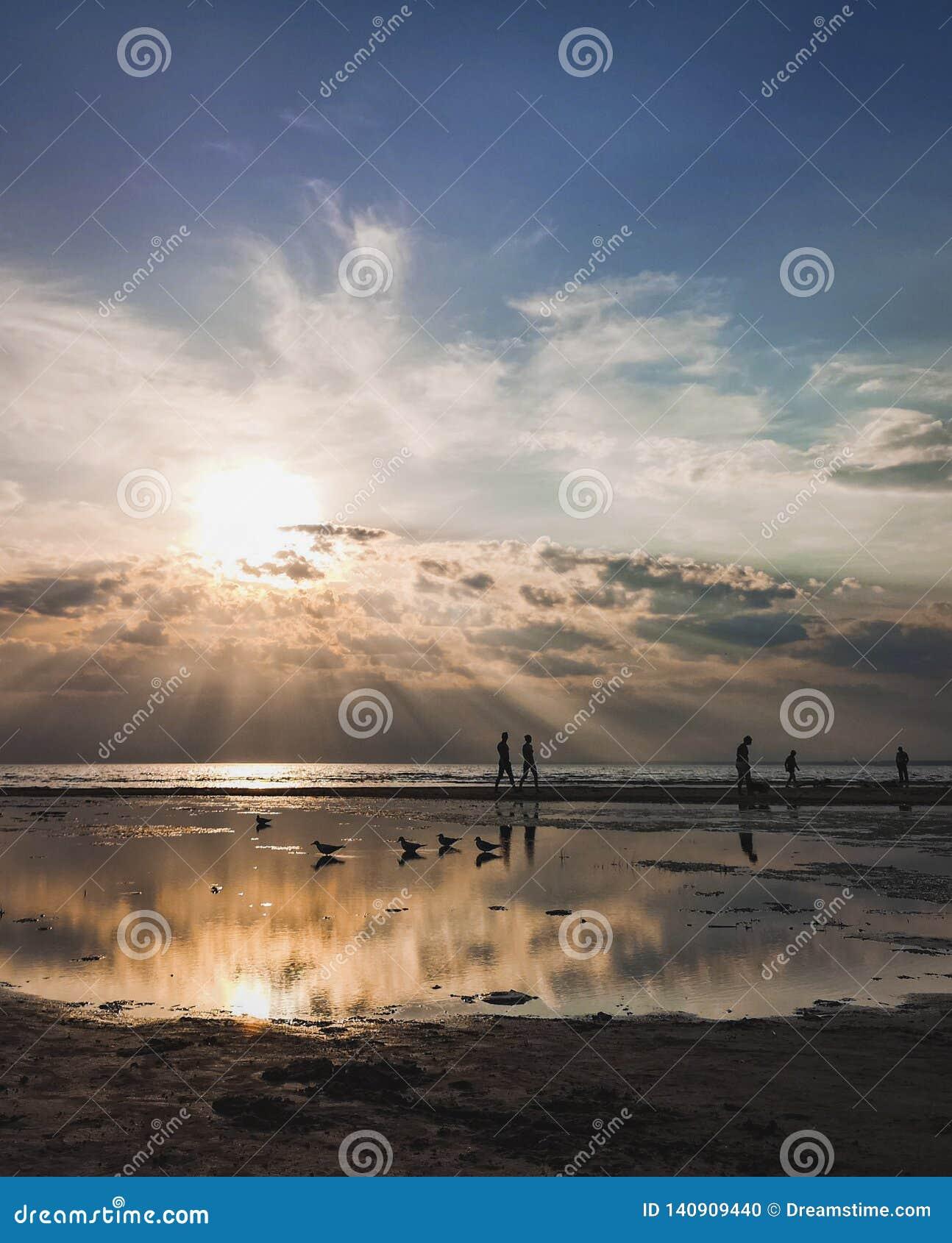 Strand och konturer av folk Solnedgång