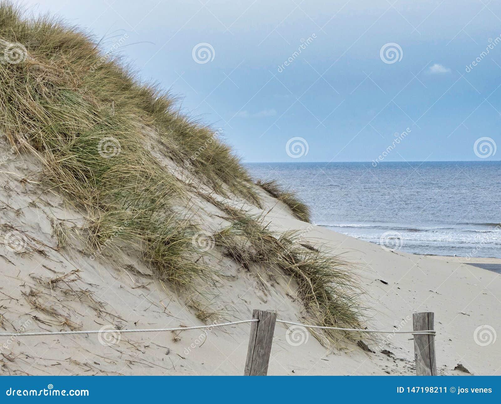 Strand in Terschellling