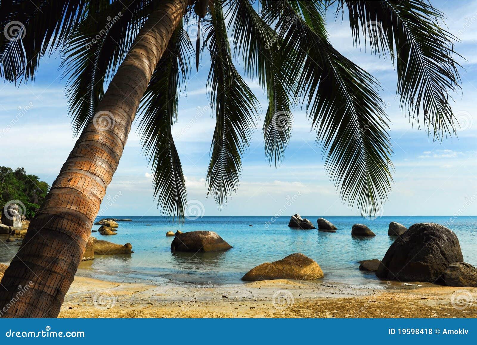 Strand tropiska thailand
