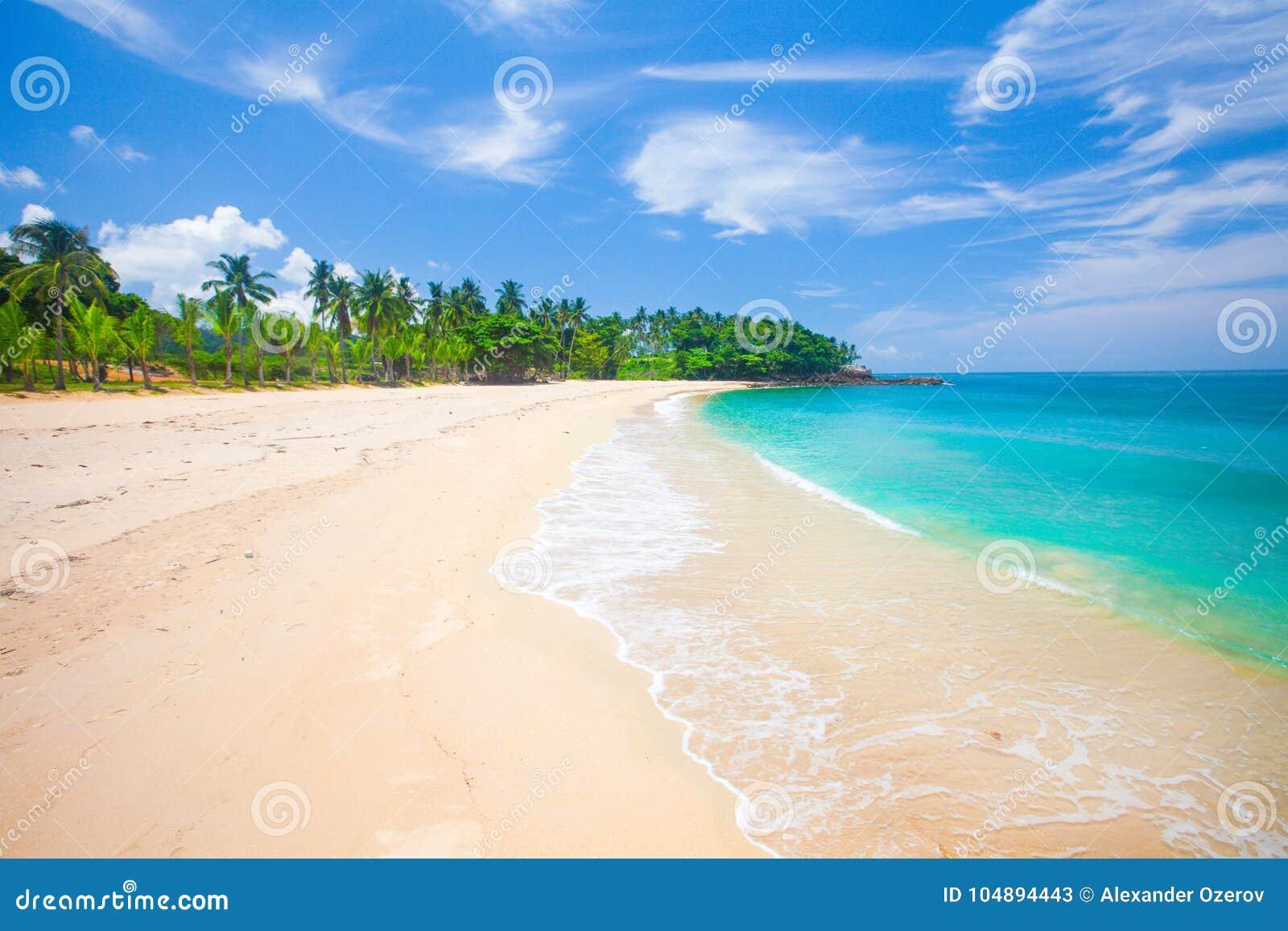 Strand und tropisches Meer