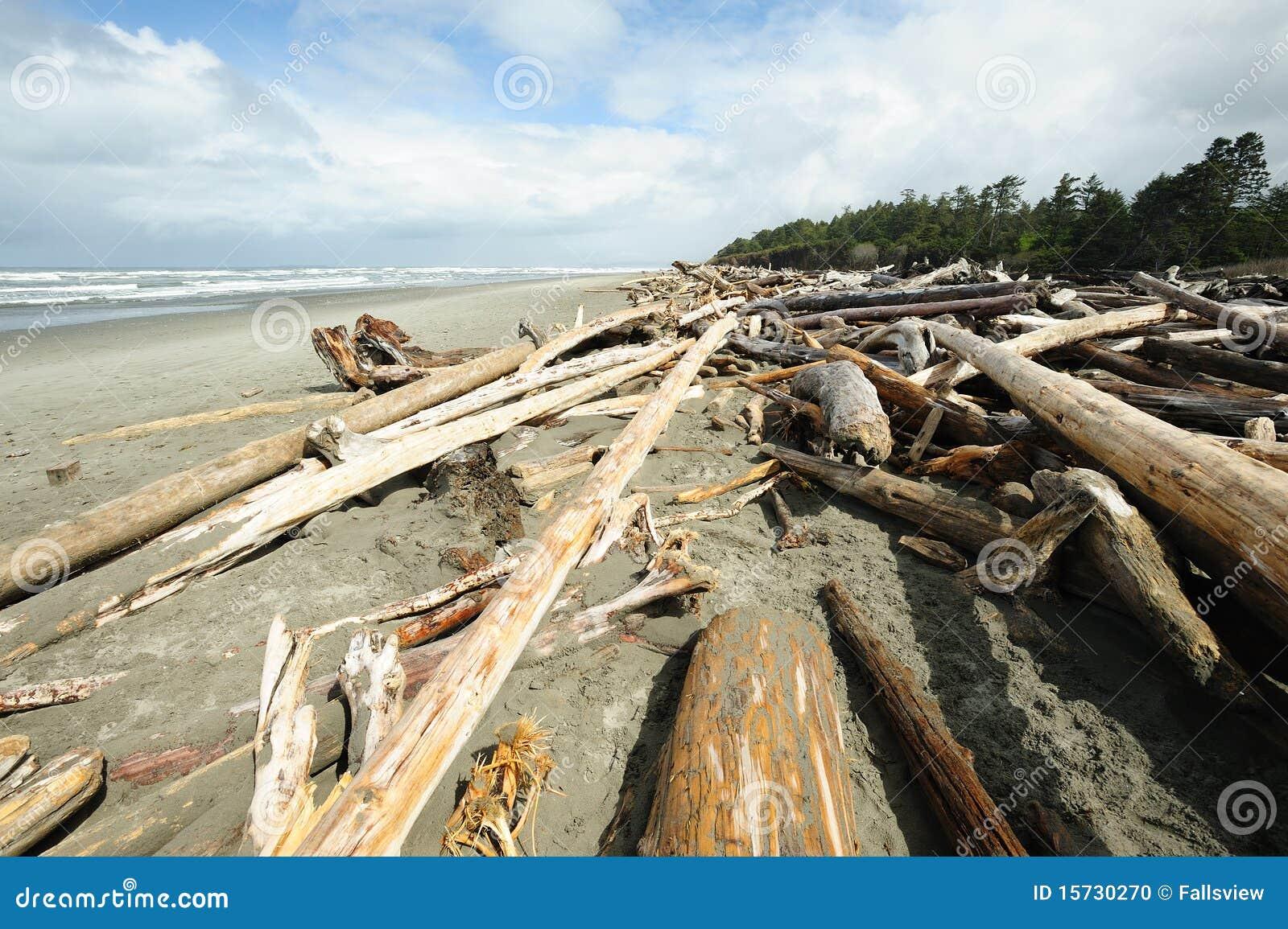 Strand van vreedzame kust