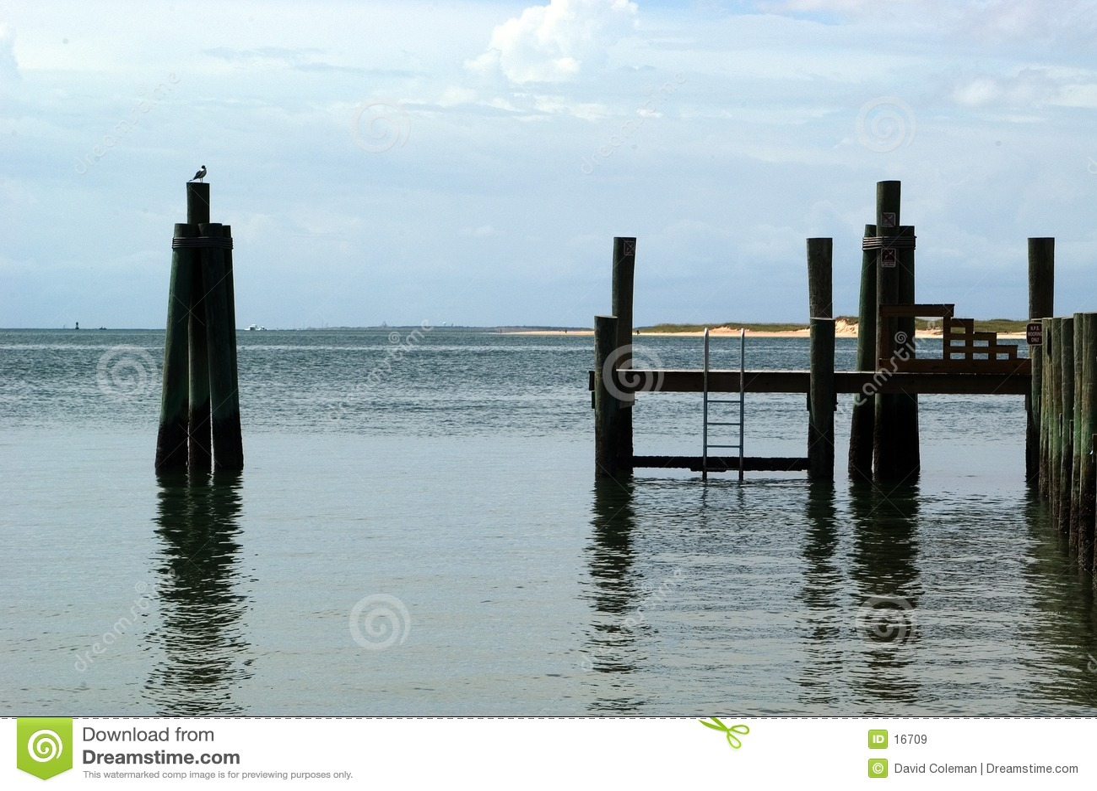 Stranddocksikt