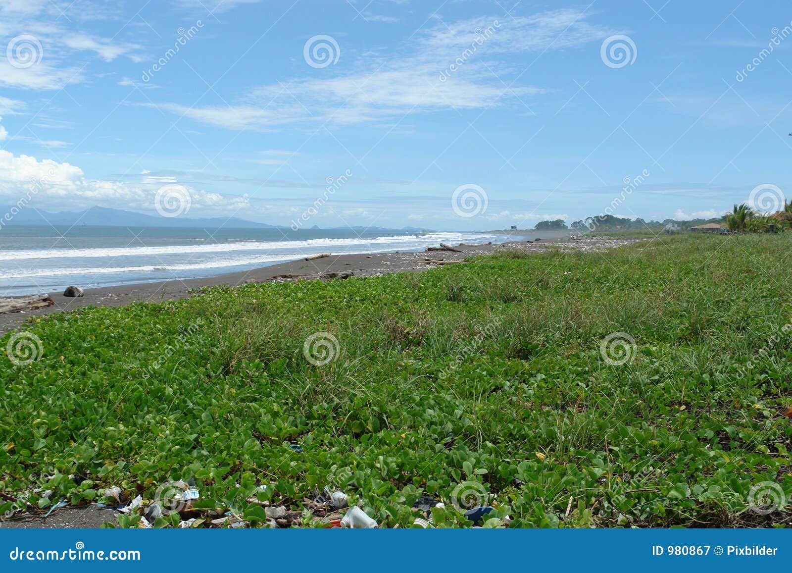 Strandförorening