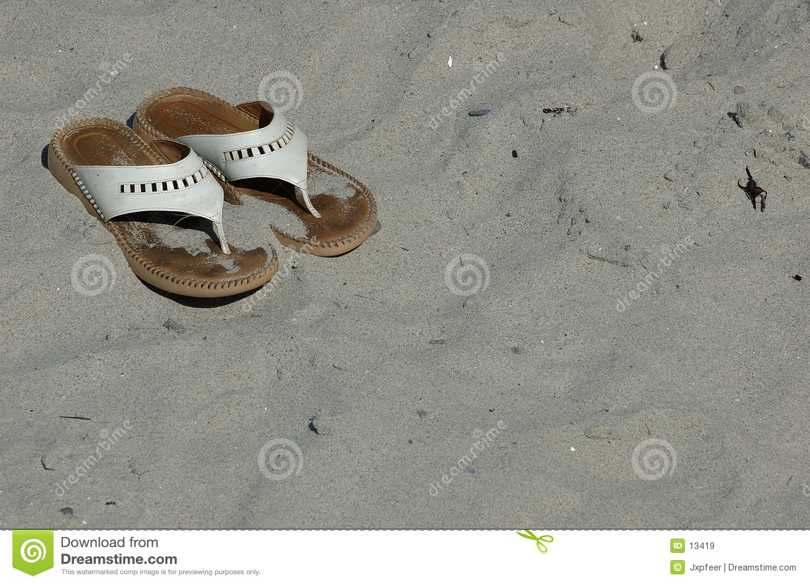 Strandsandelholze