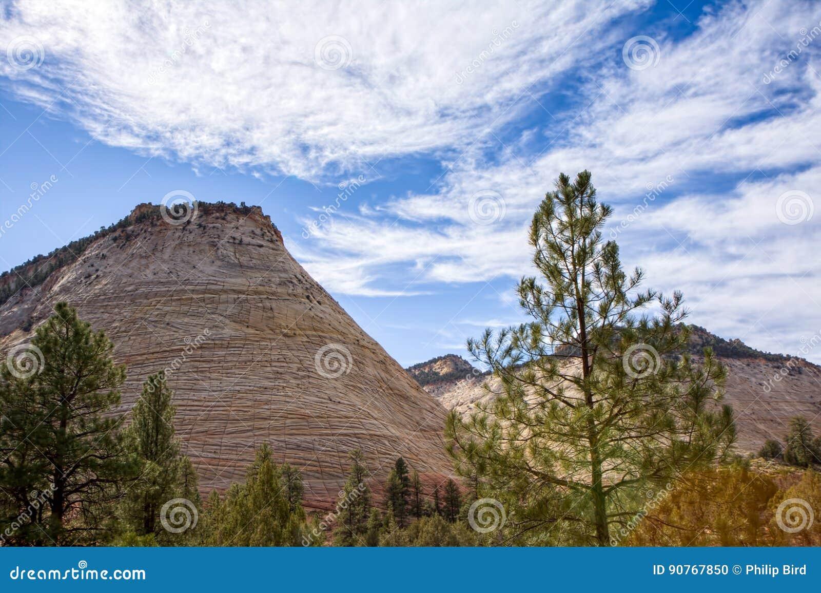 Strange Rock Formation Checkerboard Mesa