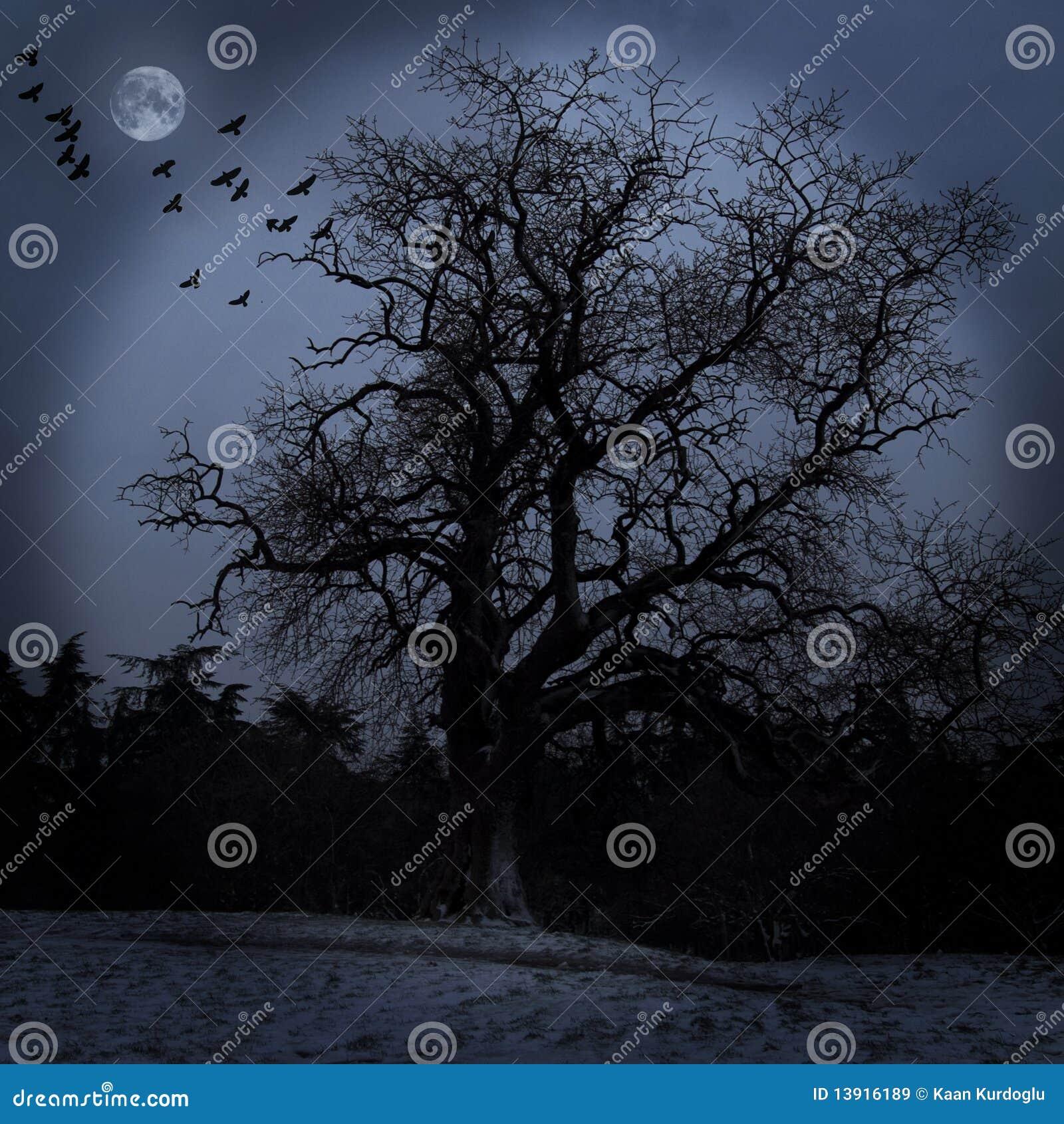 Straszny drzewo