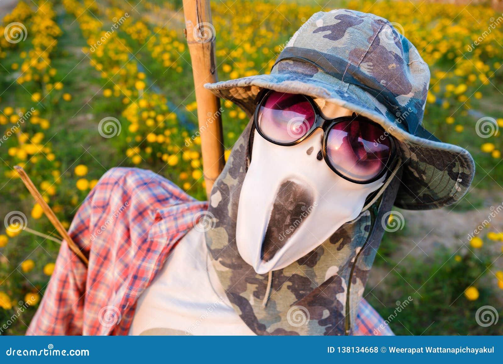 Straszny strach na wróble w ogródzie