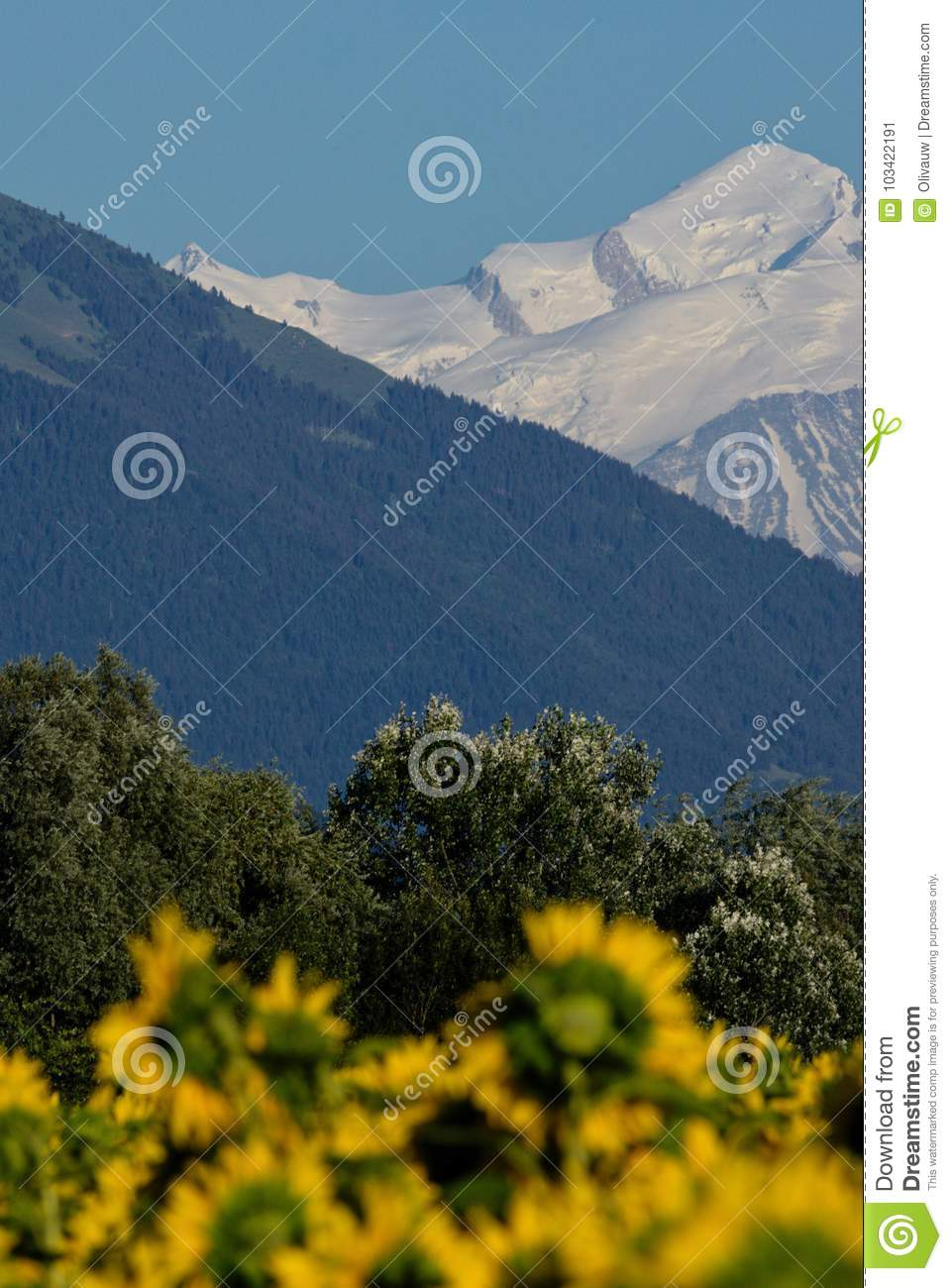 Strata of Nature: Fields, Forests and Mountains