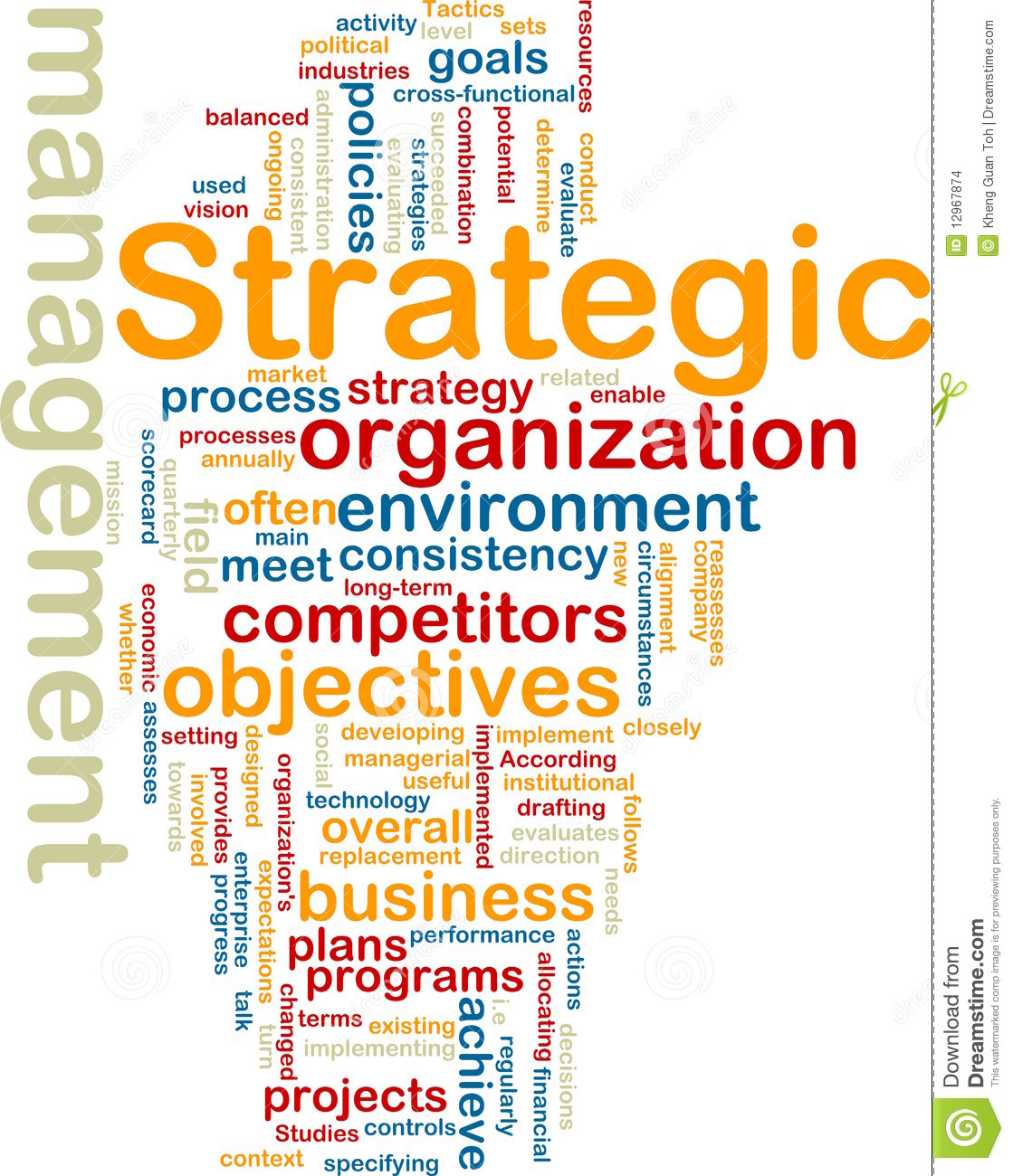 Strategic Planning Processes for Information Technology