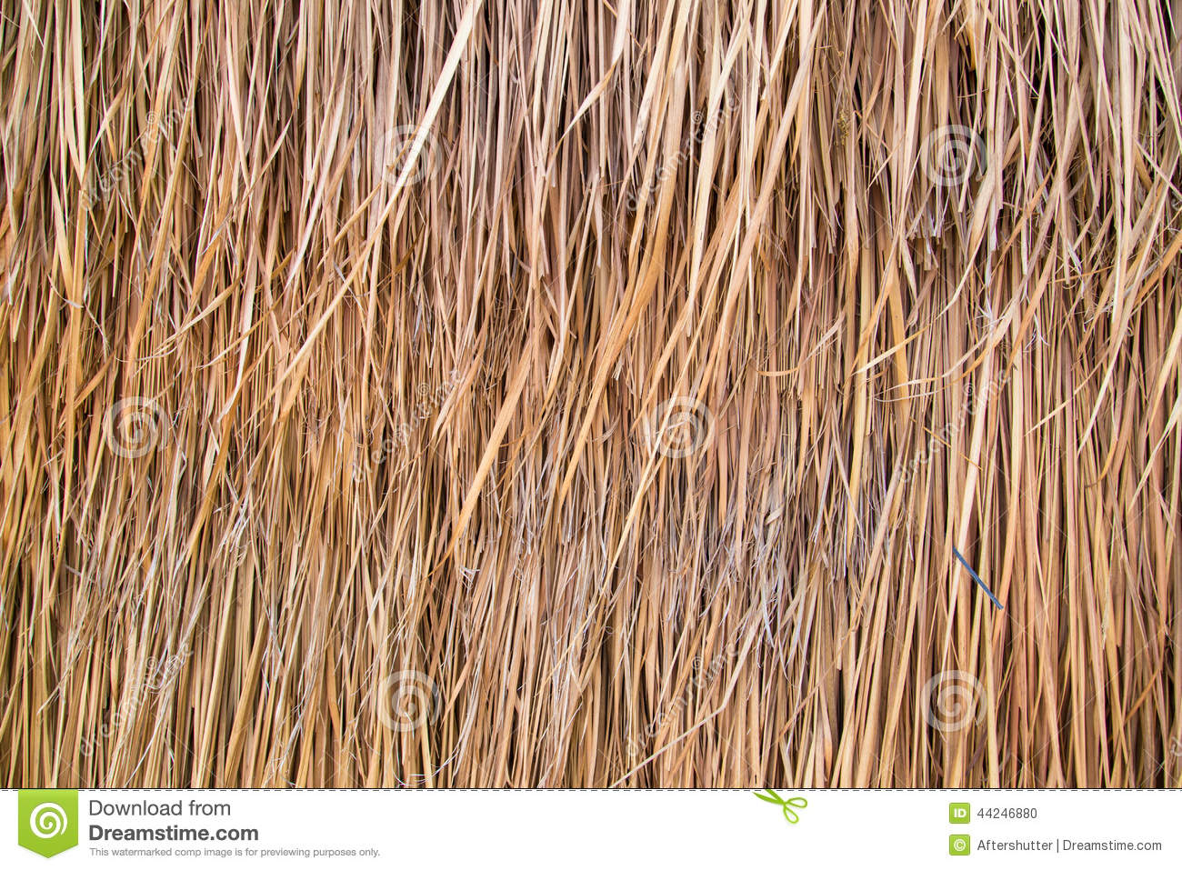 Straw or Dry Grass Background Surface Texture Pattern